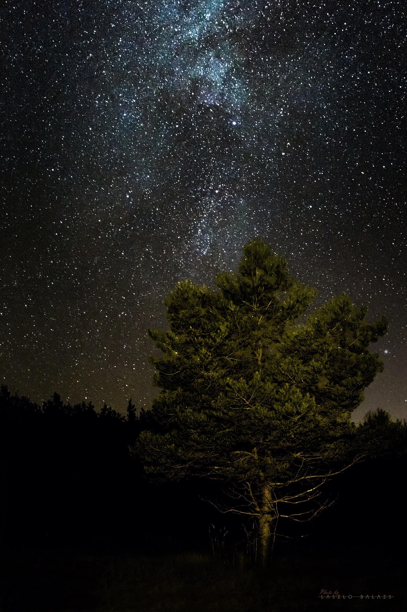 A piece of Milky Way by Laszlo Balazs