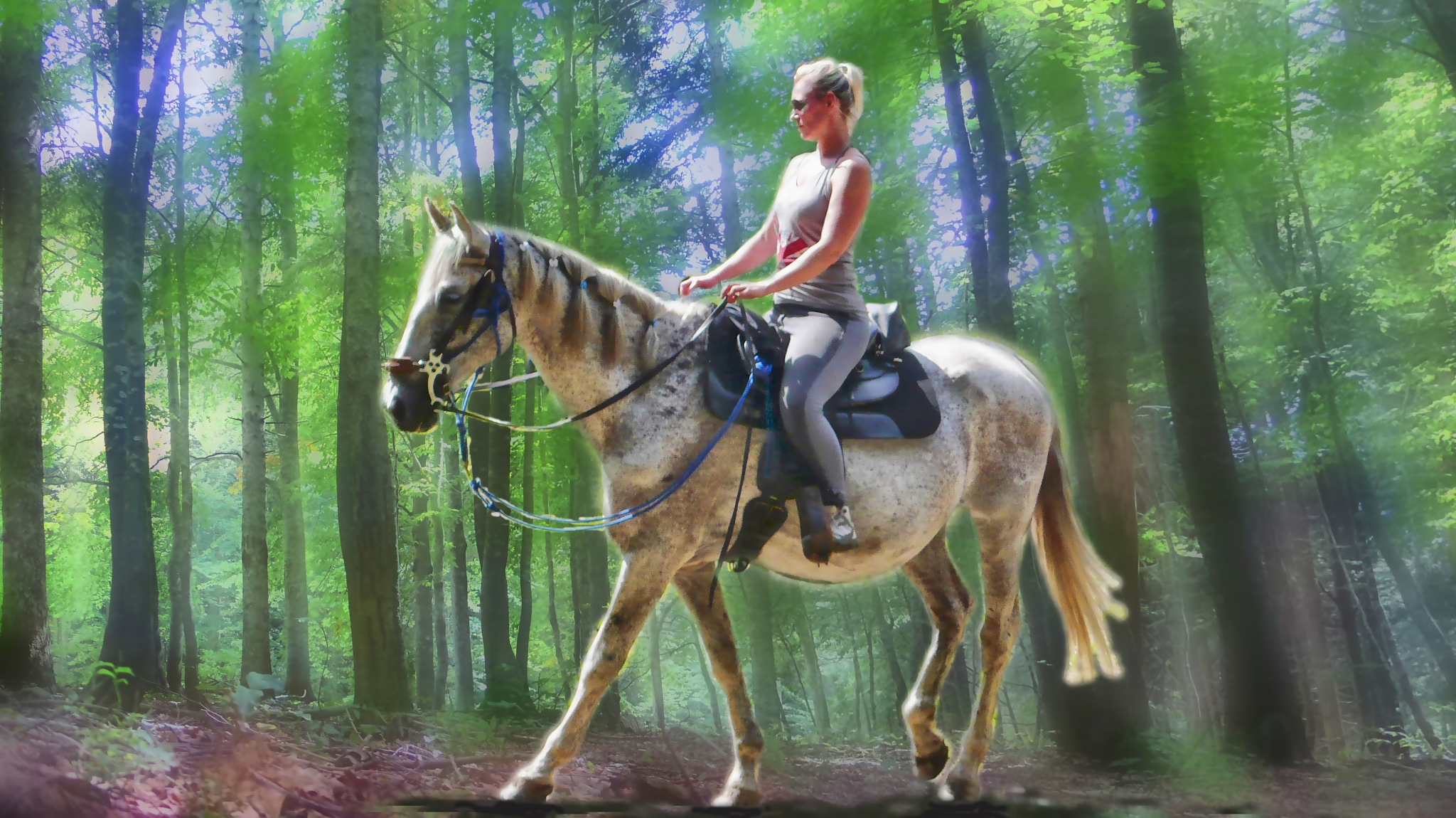 horsewoman in the forest by sunrisesunset
