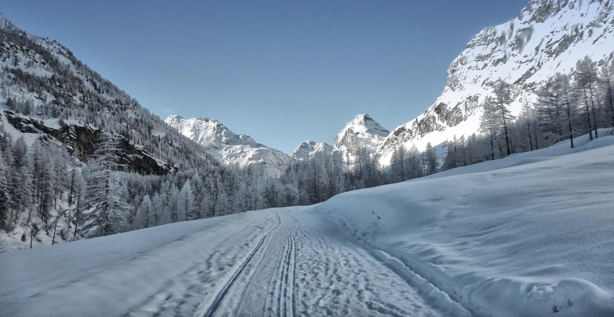 skiing by sunrisesunset
