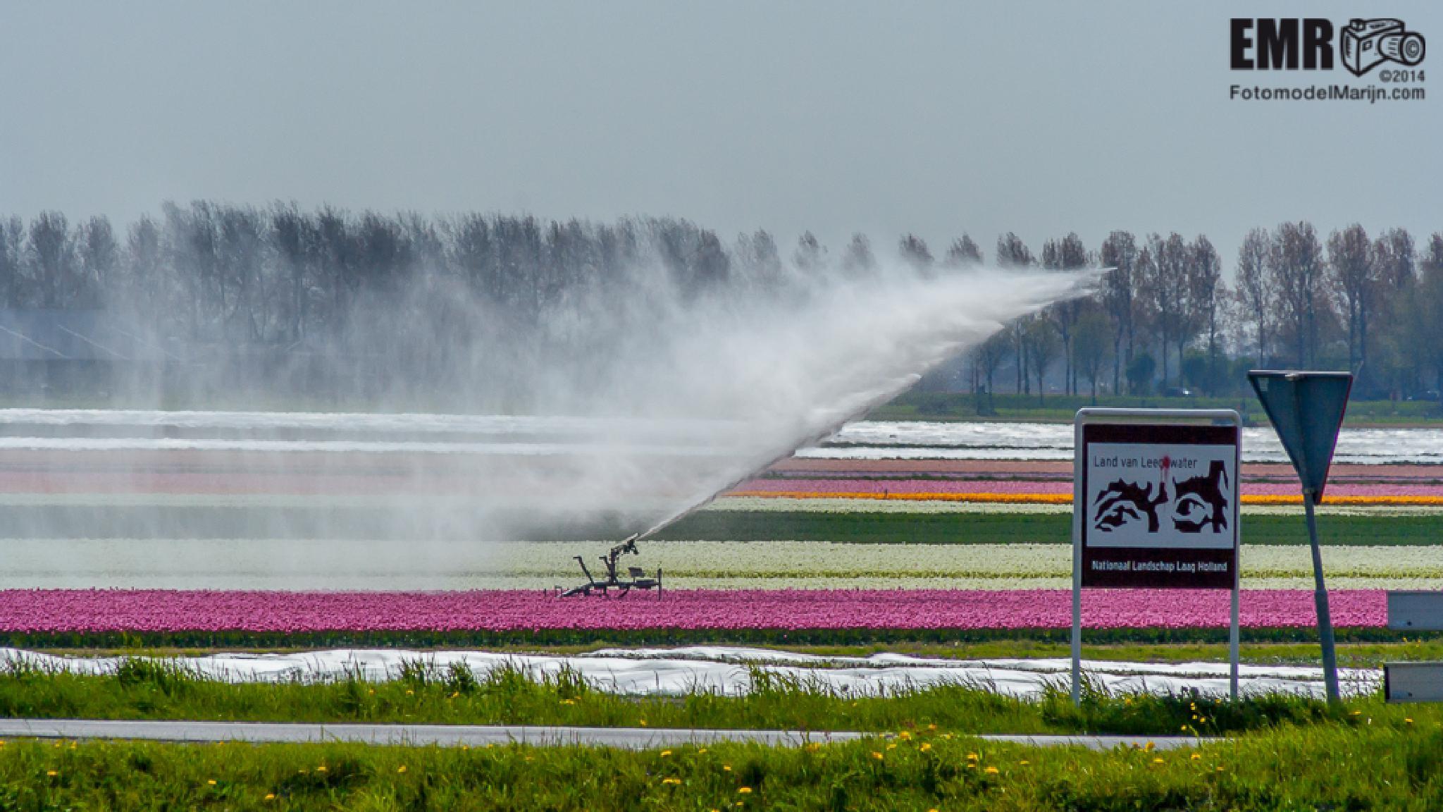 Nederland  by EMR Photography & Fotomodel Marijn