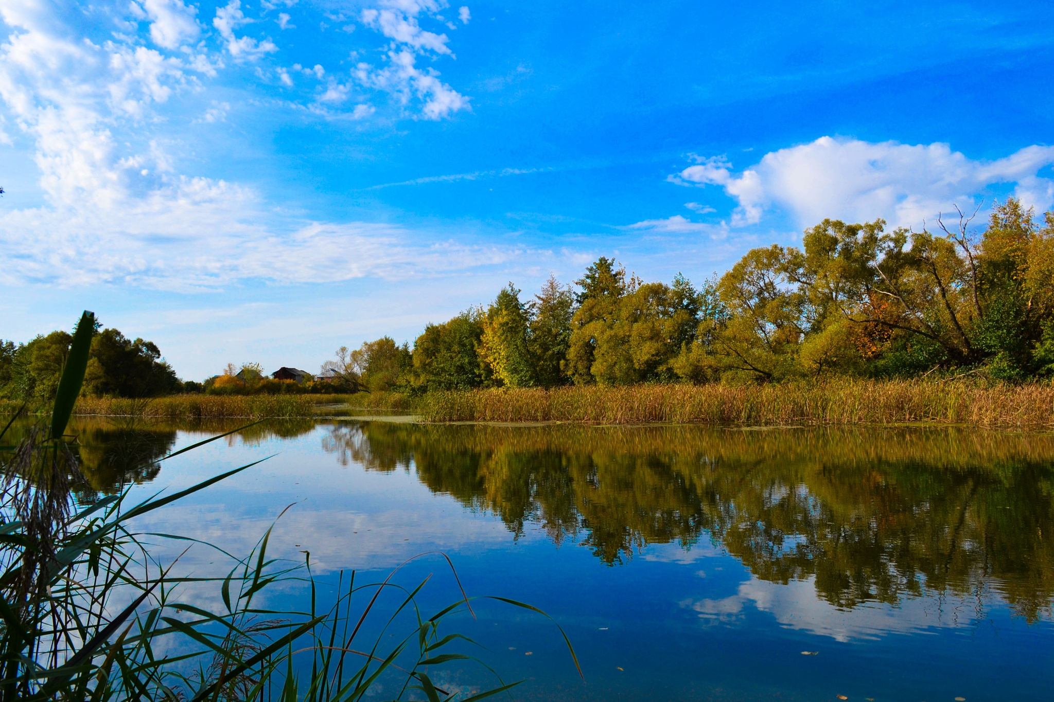 Autumn landscape. The reflection in the water surface of the river. by Andrey Gordeeff