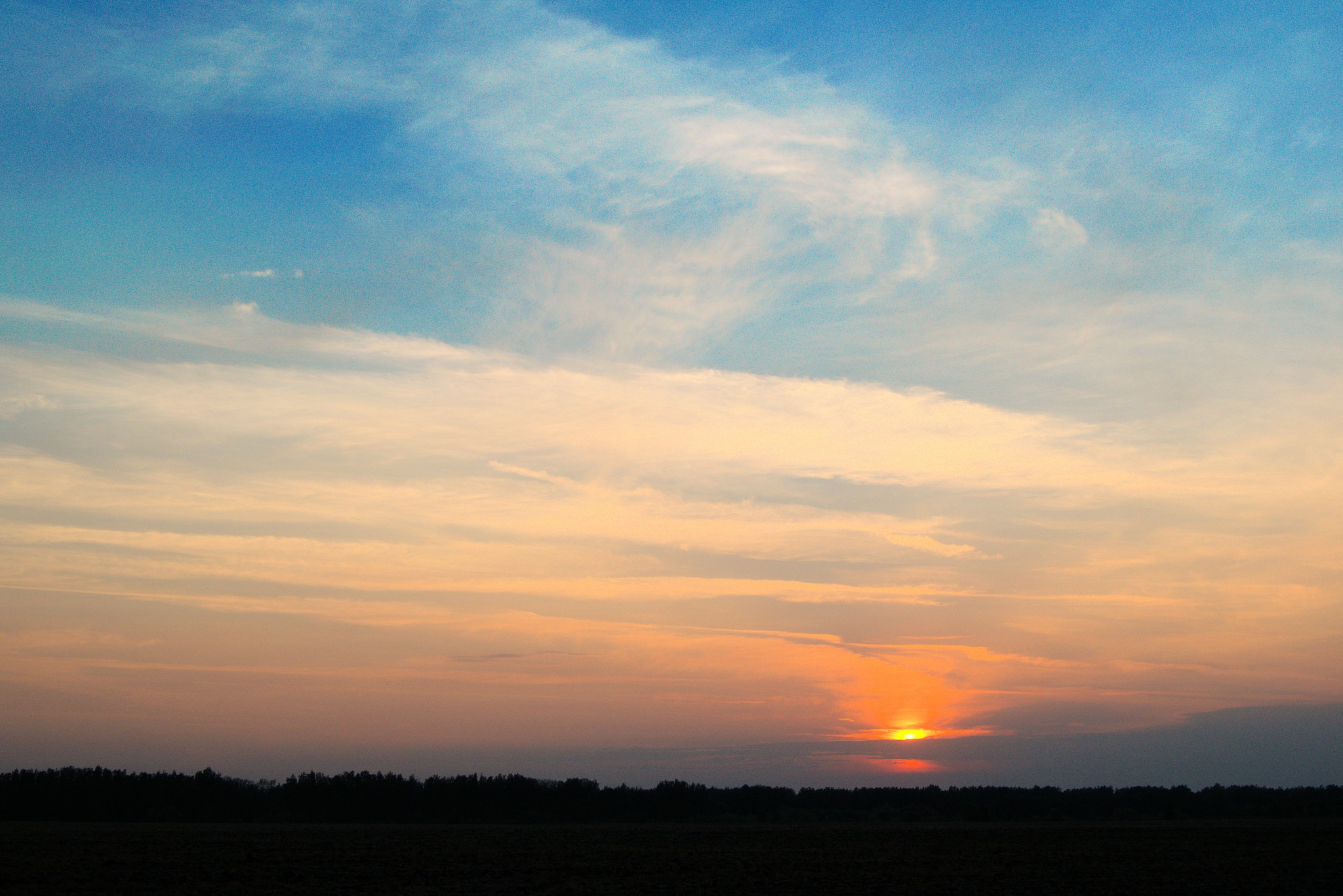 Beautiful, summer sunset in the field. by Andrey Gordeeff