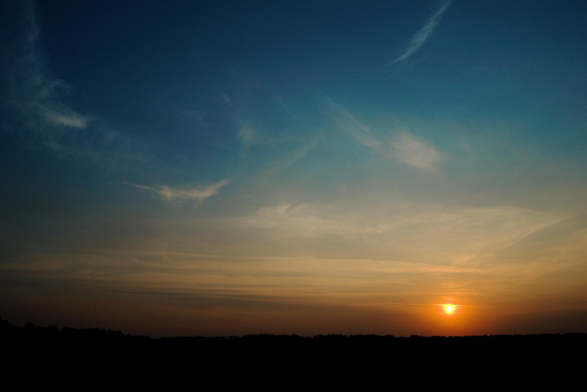 Summer evening in the field. Golden sunset. by Andrey Gordeeff