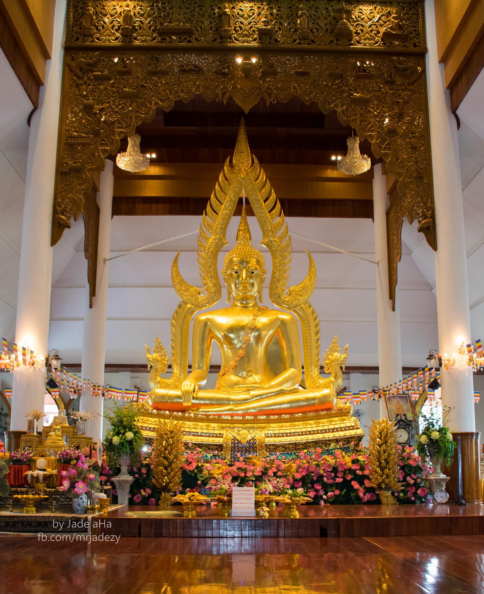 Buddha Days by Jade aHa