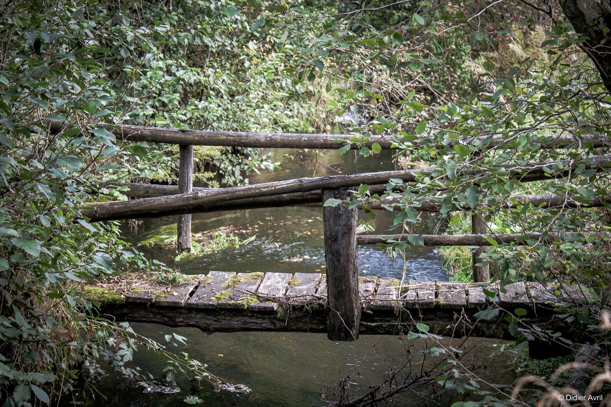 Le petit pont de bois by Didier Avril