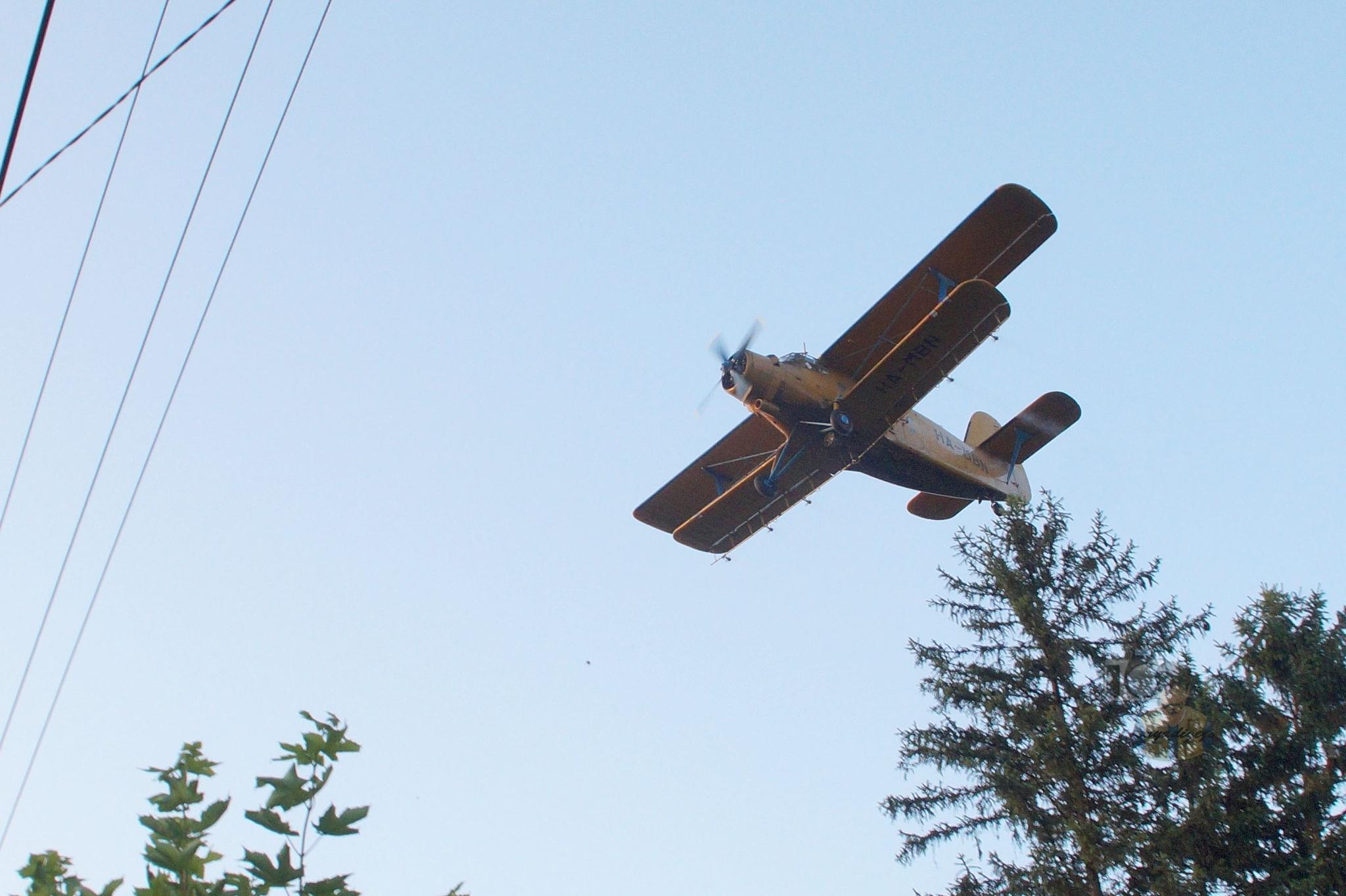 June 23,16. mosquito control with Antonov An-2 #2 by hunyadigeza