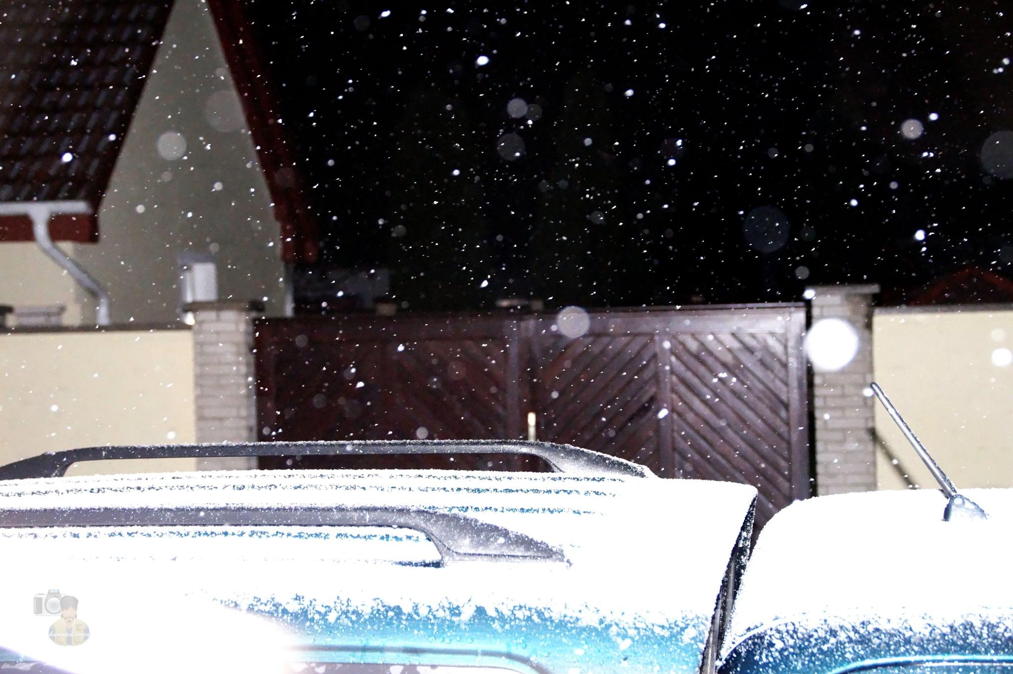 Mar.17, p.m.8.00 now!! strong snowfall..... by hunyadigeza