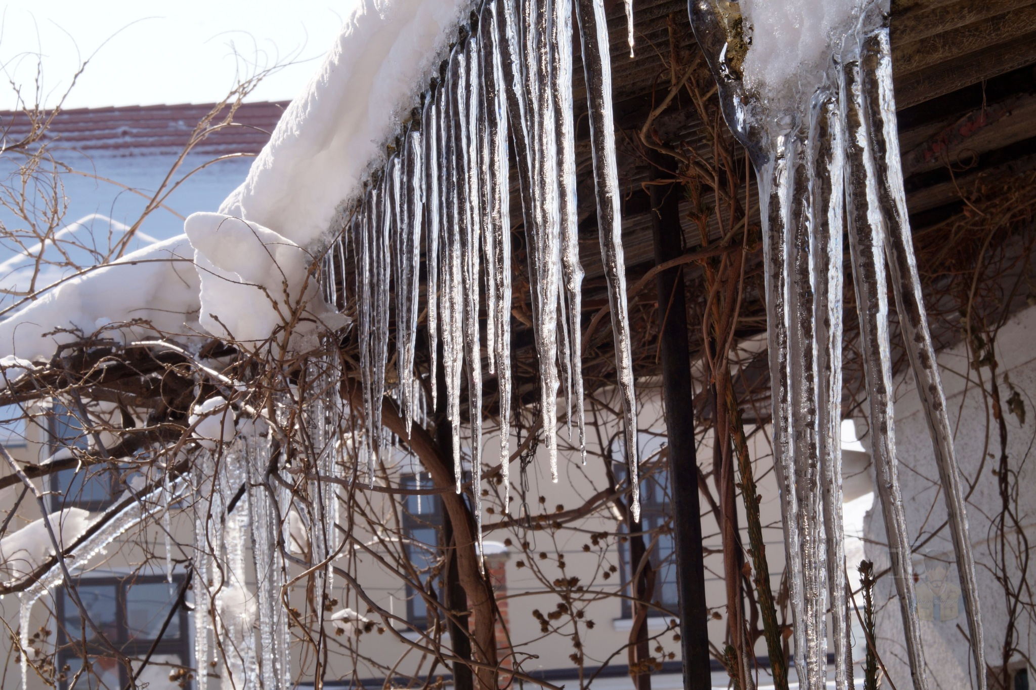Febr.24, icicles by hunyadigeza
