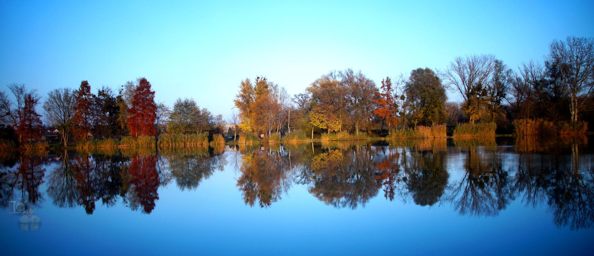Nov.09, autumn in city park #5 reflection by hunyadigeza