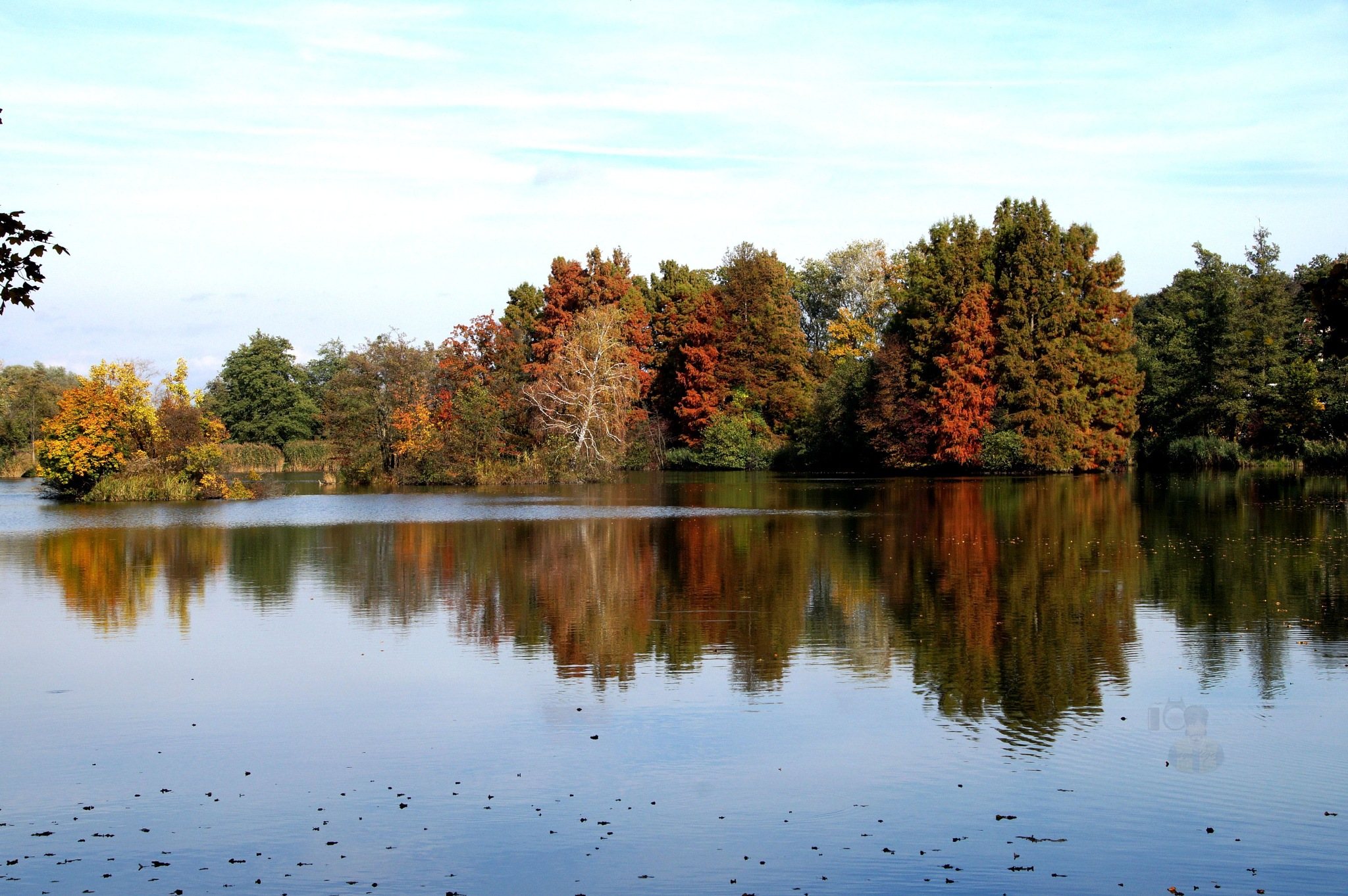 Oct.23, autumn reflection #1 by hunyadigeza