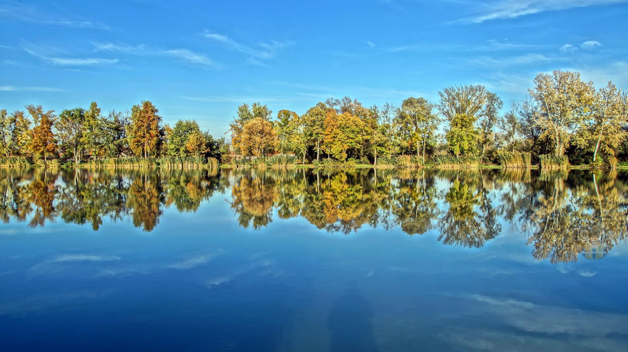 Oct.18, autumn in city park #8 HDR by hunyadigeza