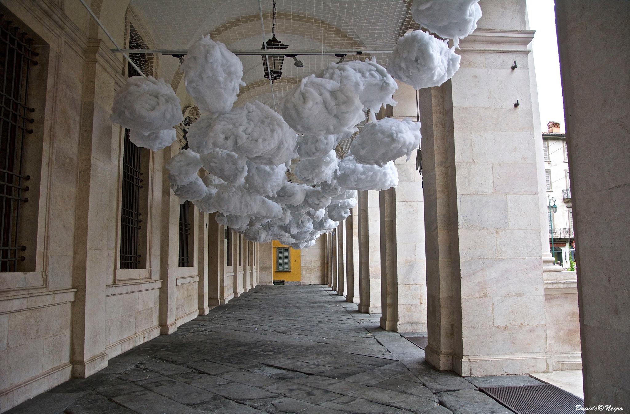 cotton by DavideNegro