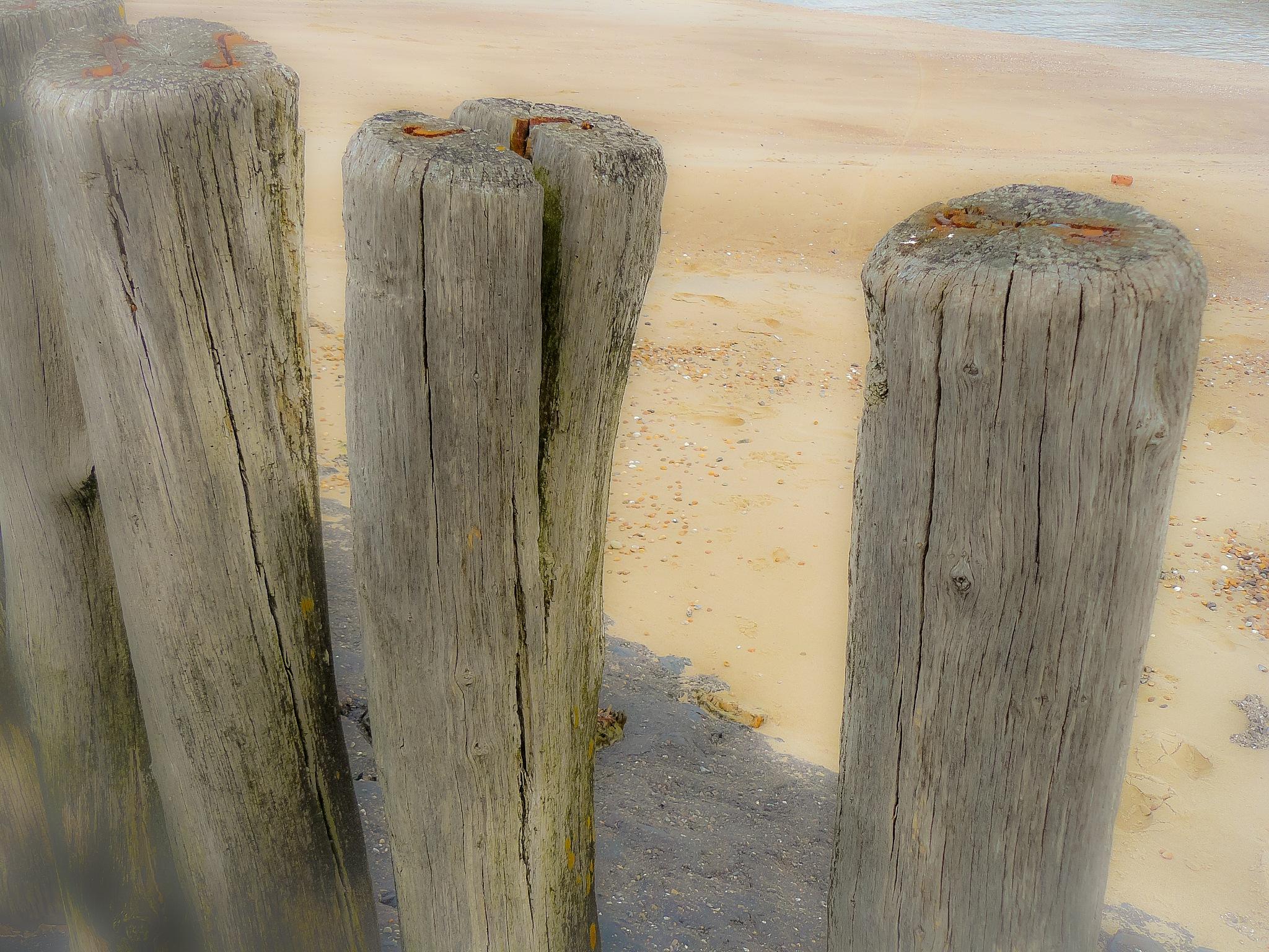 beach by Paul Geutjes