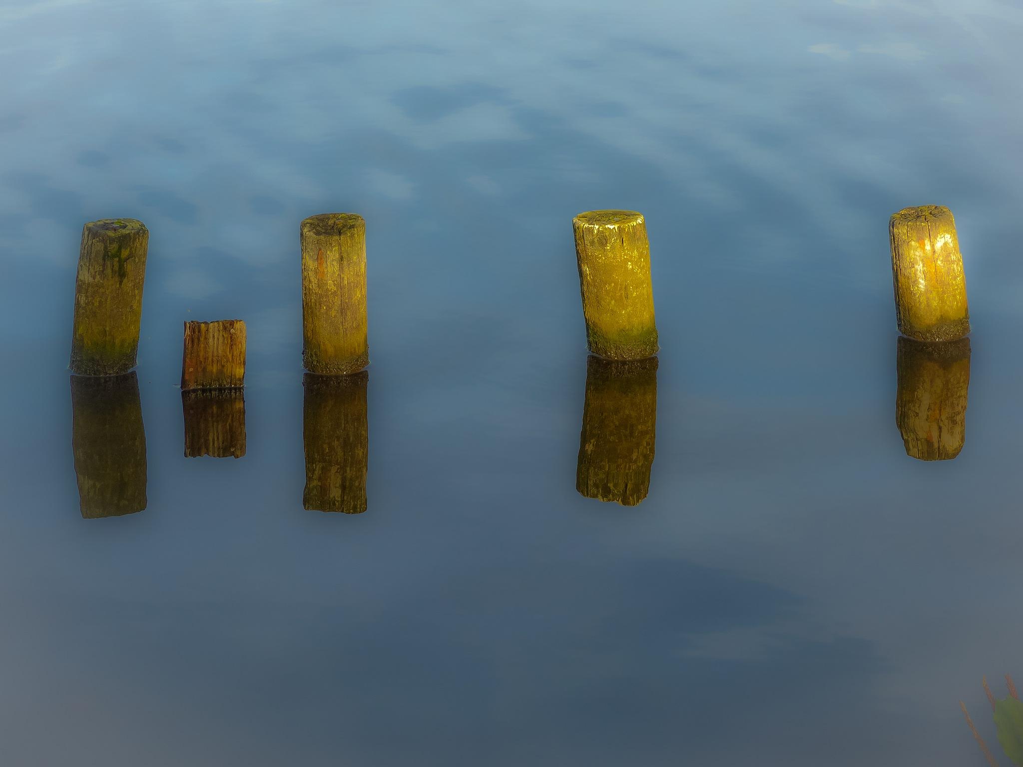 sun, water en wood by Paul Geutjes