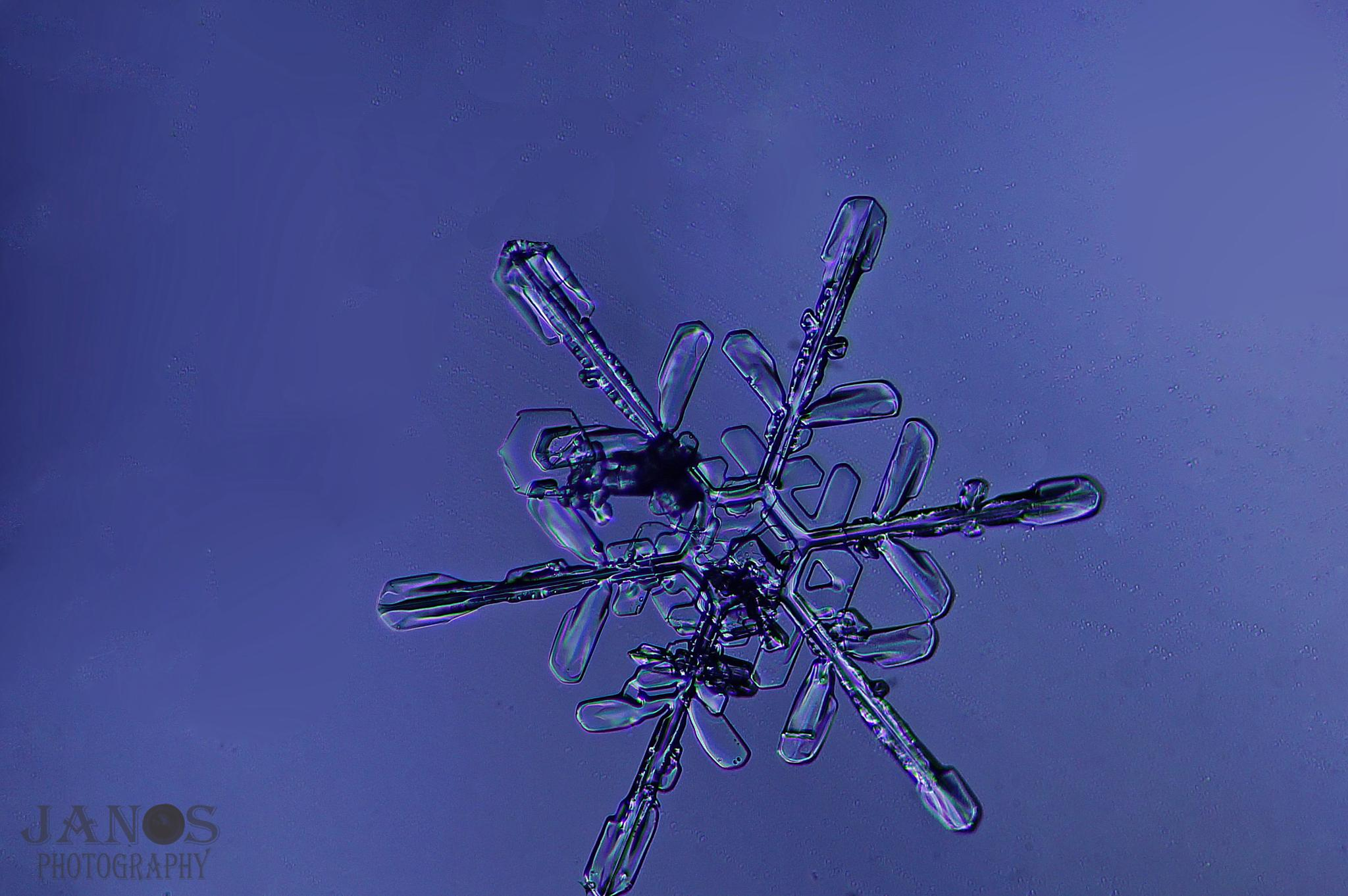 snowflake by Jan Ove Skjerping