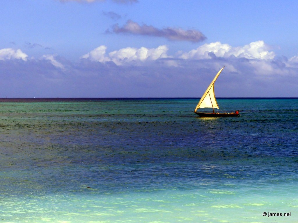 white sails and shades of blue, green and turquoise by James Nel
