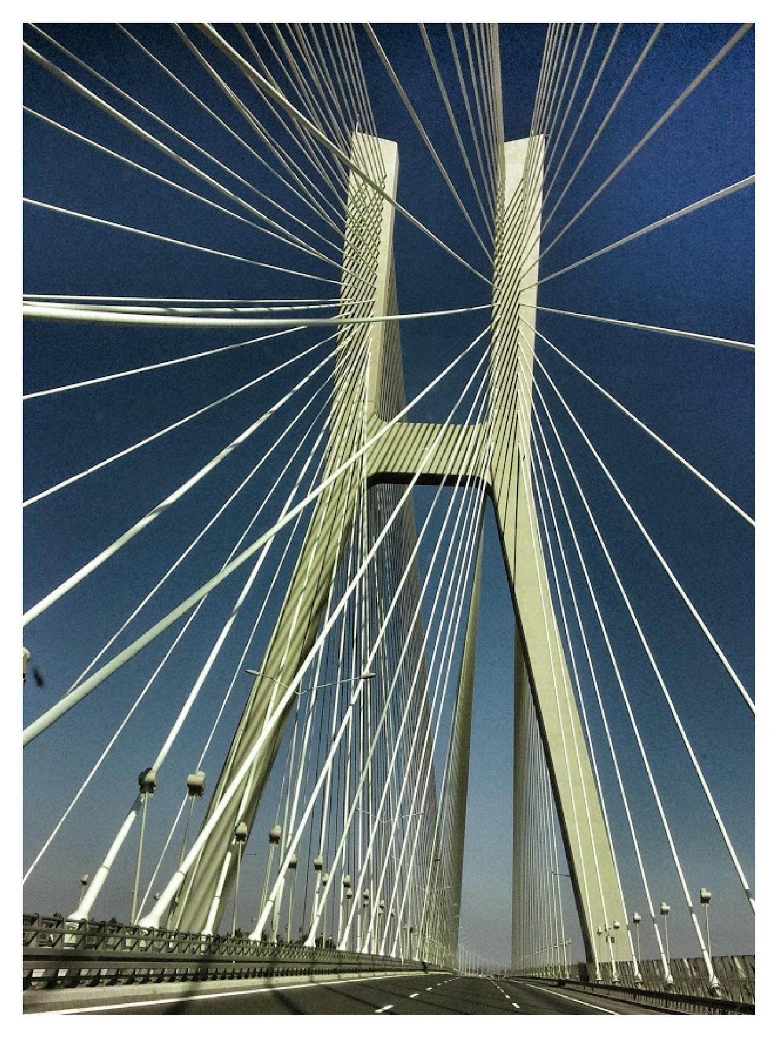 Bridge in Wroclaw by alesingr5