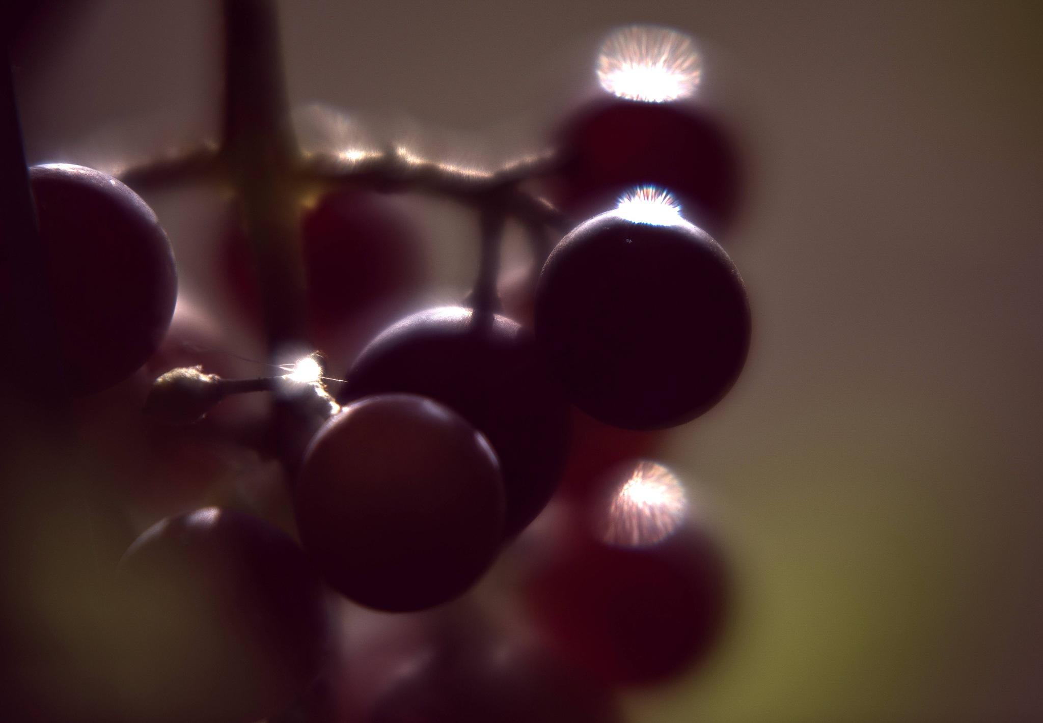 uva fragola by brunogagliardi49