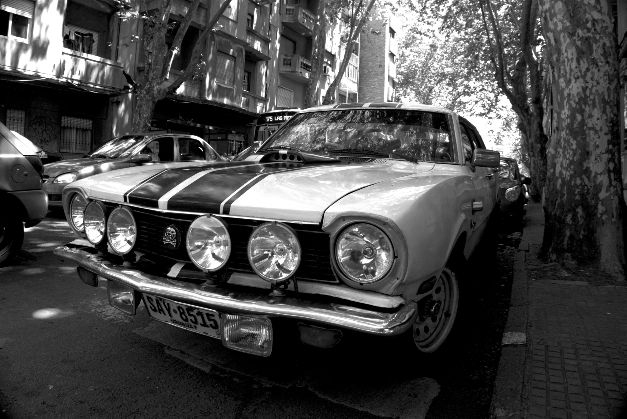 Ford Maverick by Daniel Guillermo