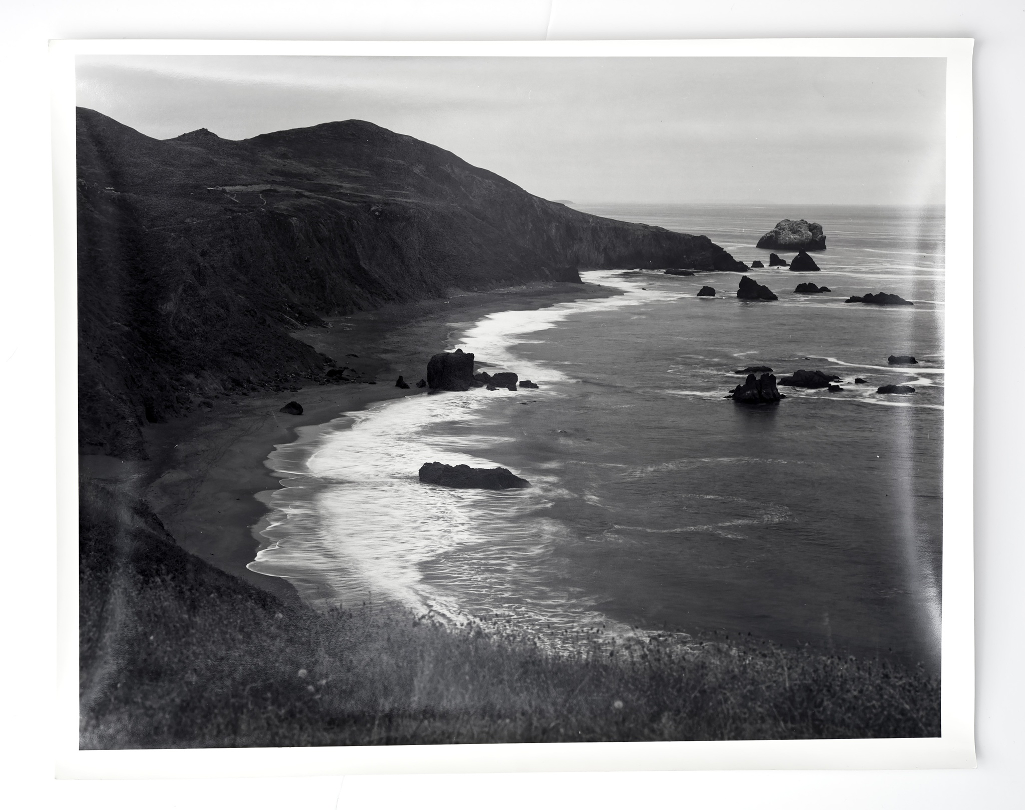 Goat rock - Sonoma county - California by andrewfrith