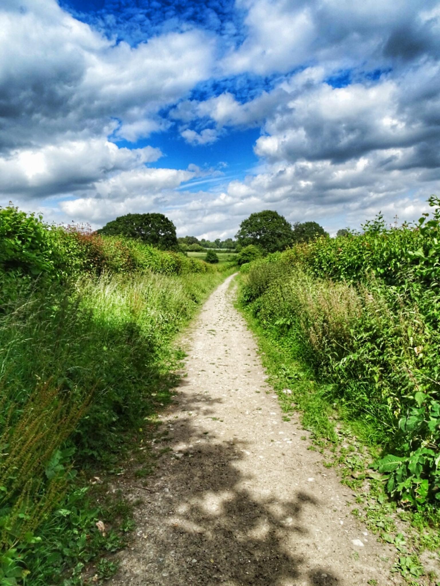 Ightam Mote, kent, UK  by www.ellesmerecollective.co.uk