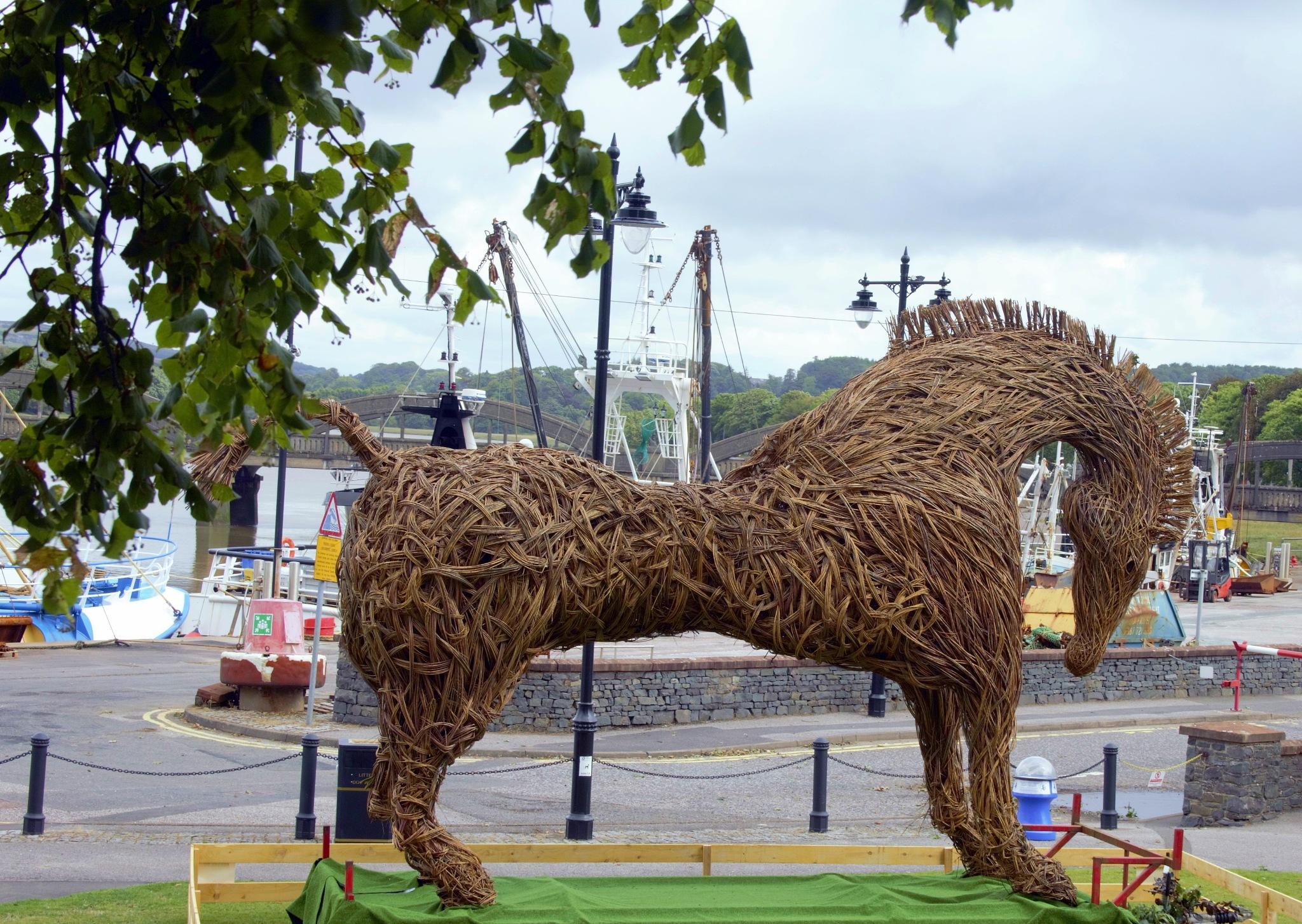 the Sea Hame Horse, Kirkcudbright  by ninascotland