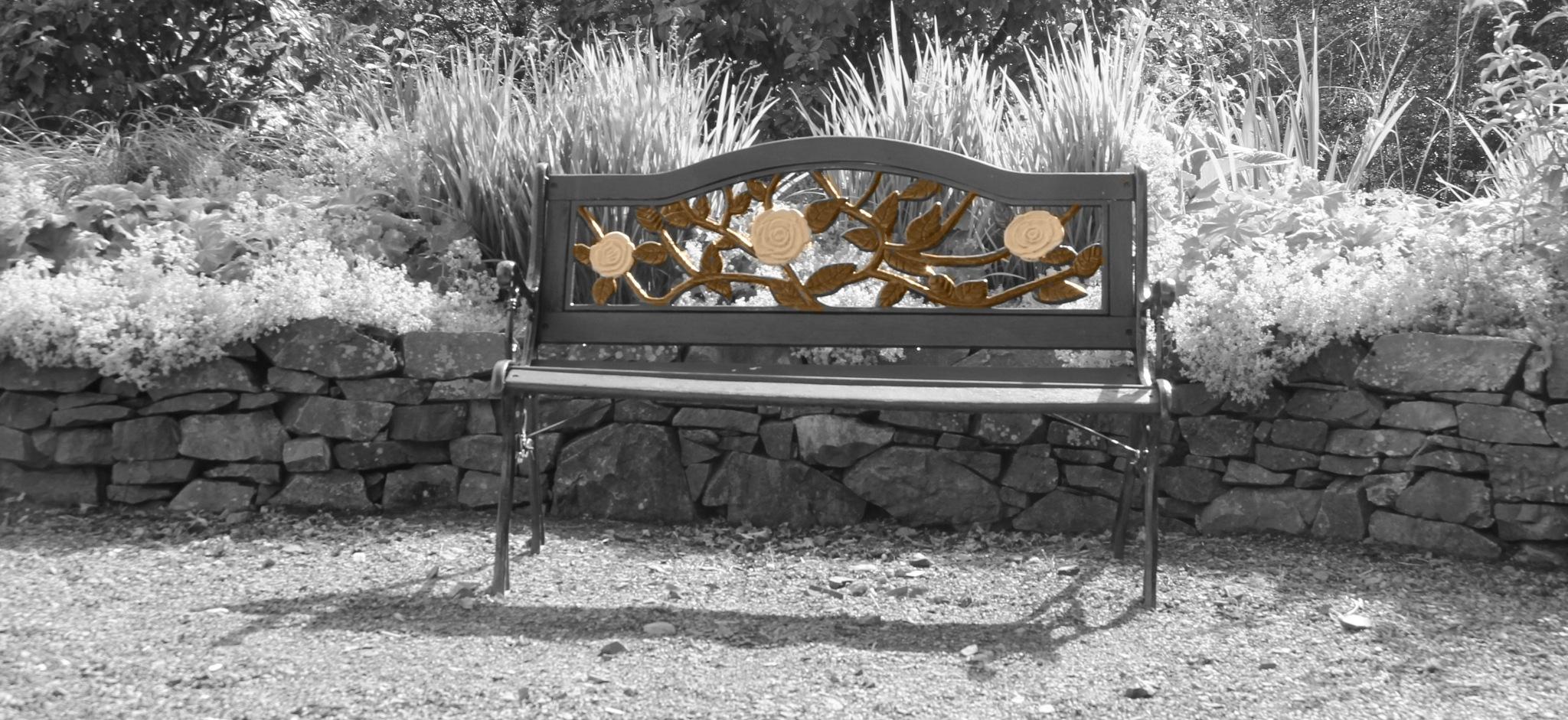 bench by ninascotland