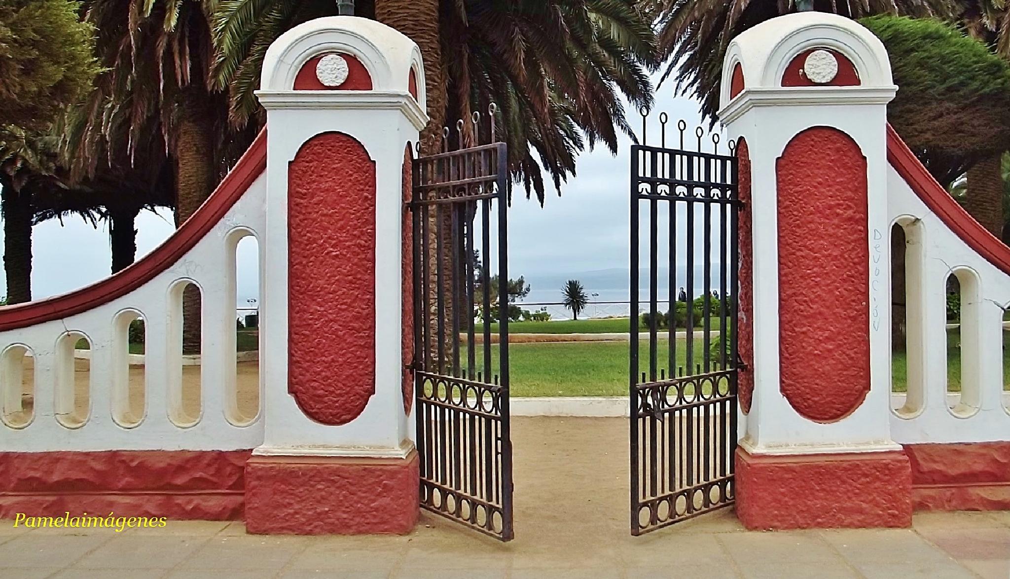 Gate by Pamela Macc