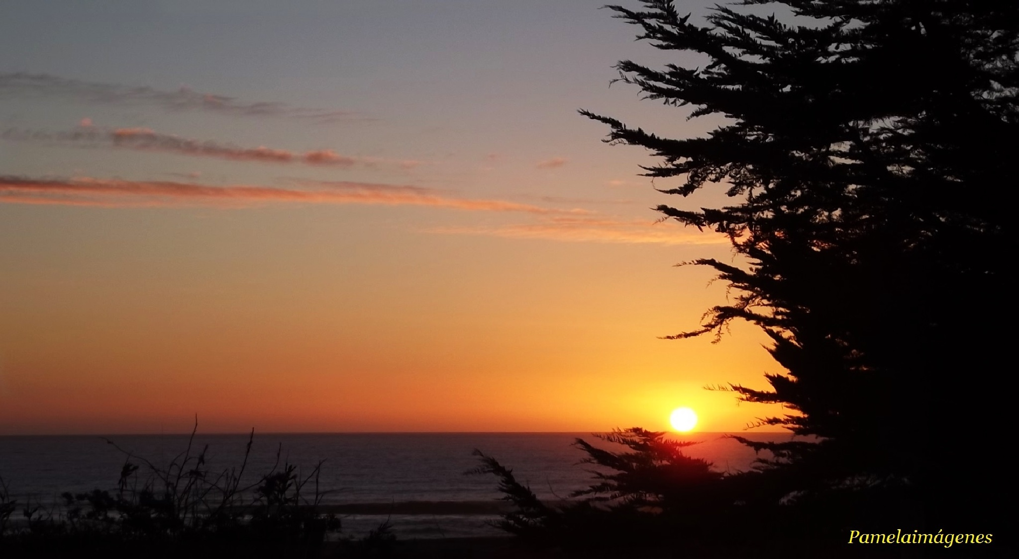Sunset by Pamela Macc