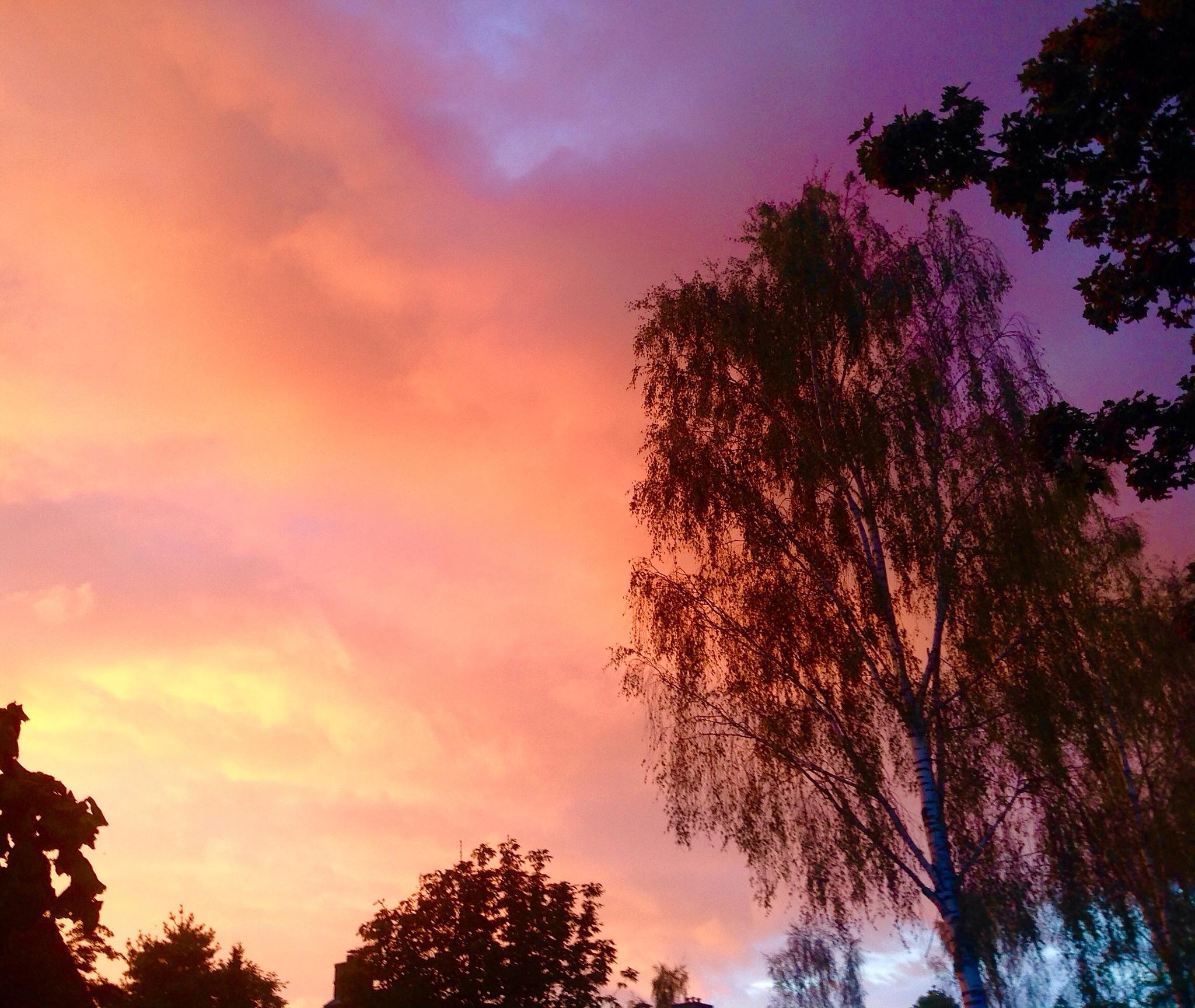 Sunset, Nice light in evening by Joop Bruurs