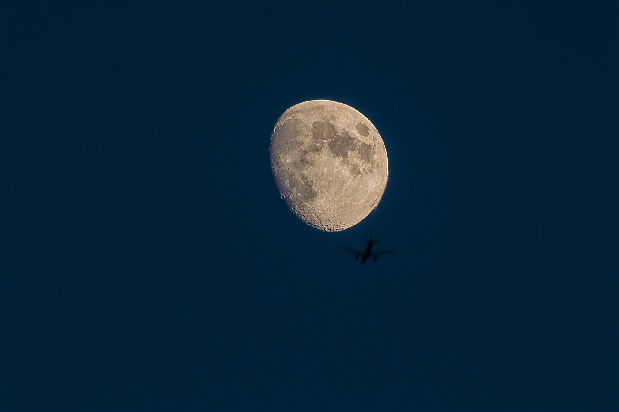 Luna e easyJet by v2franchi