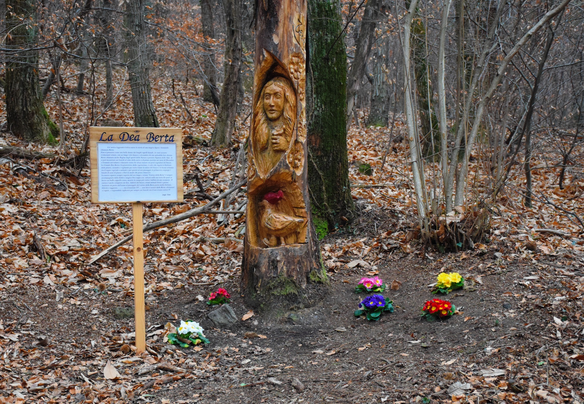 Passeggiando nel bosco ti senti protetto sempre  by v2franchi