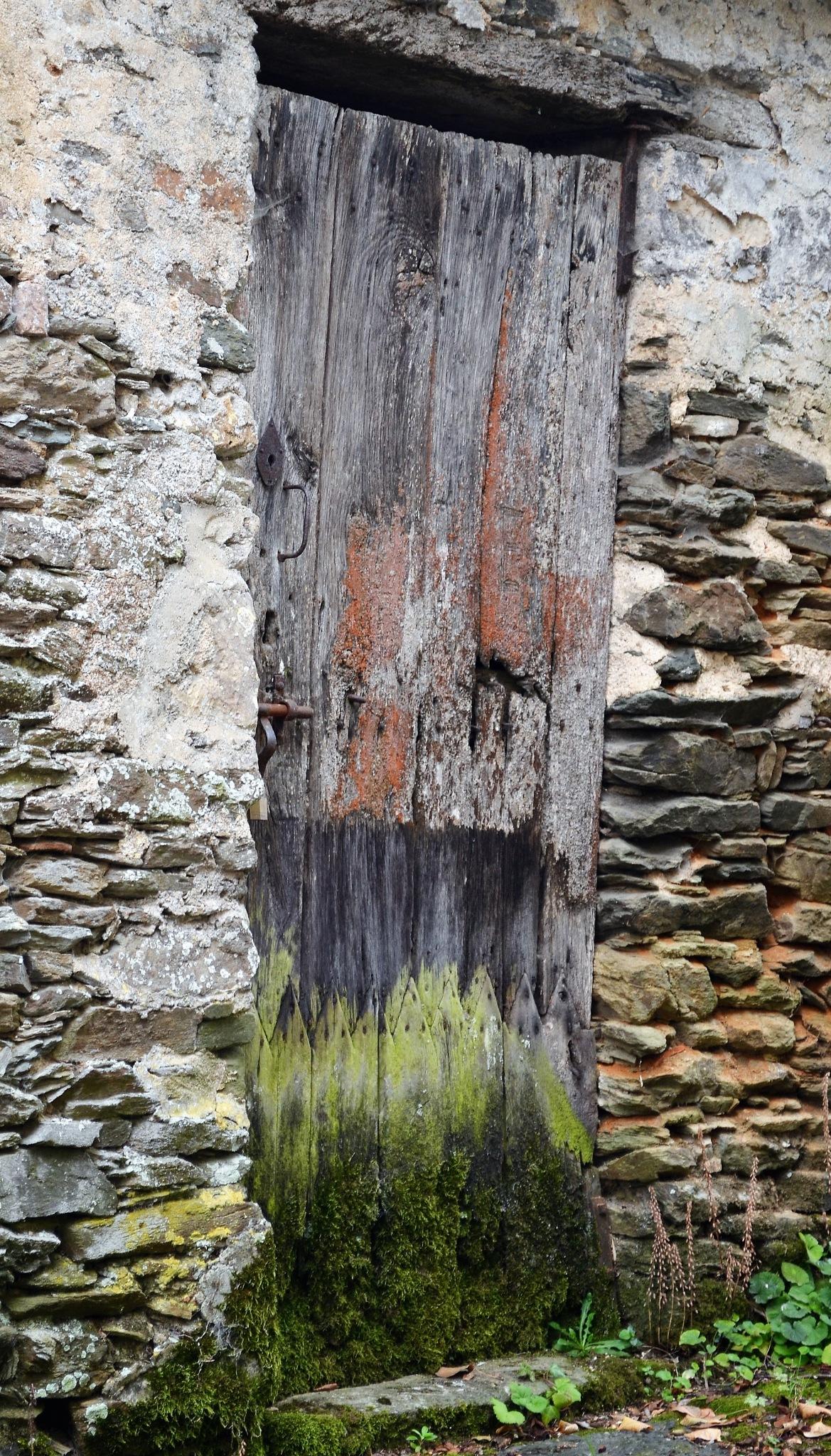 Old door by franky.decruw