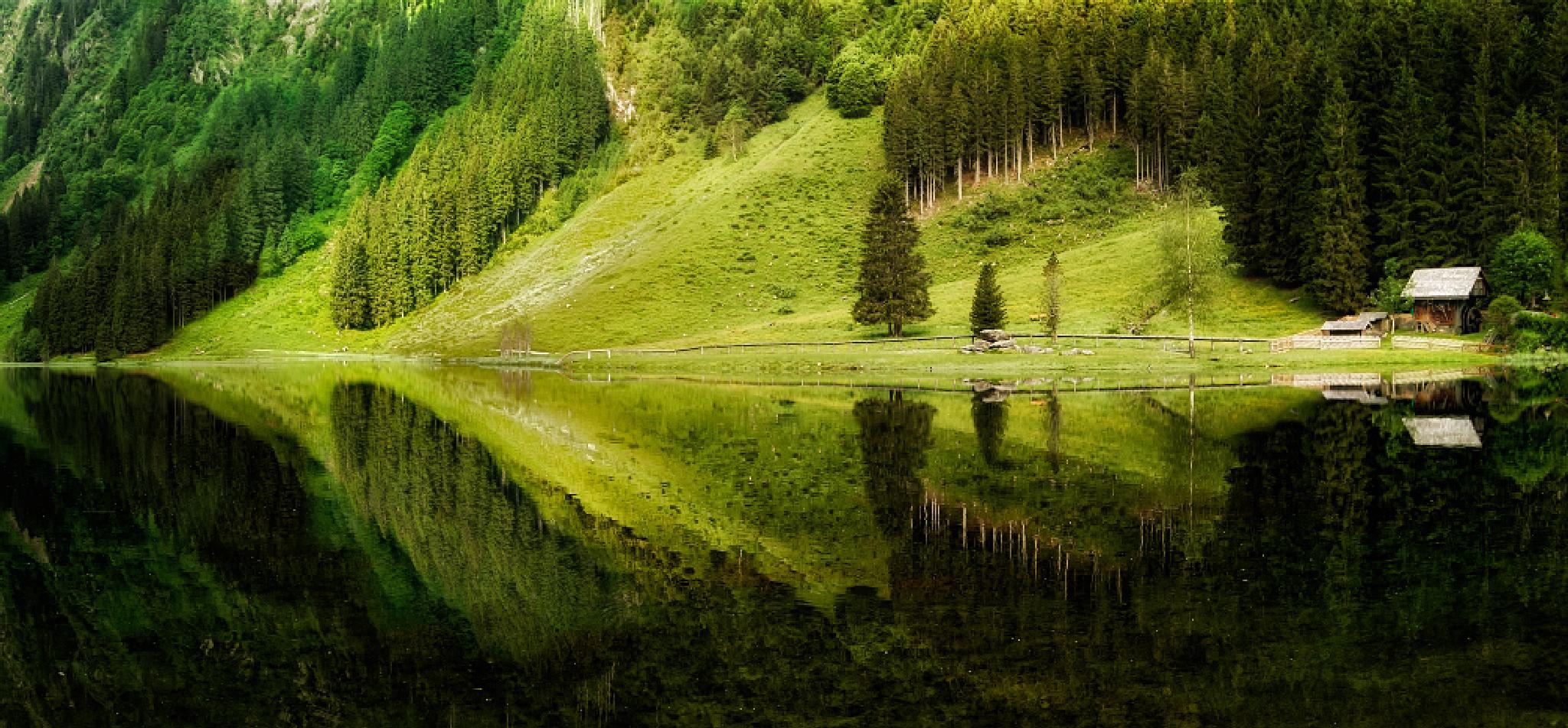 Reflection by Tamás Hauk