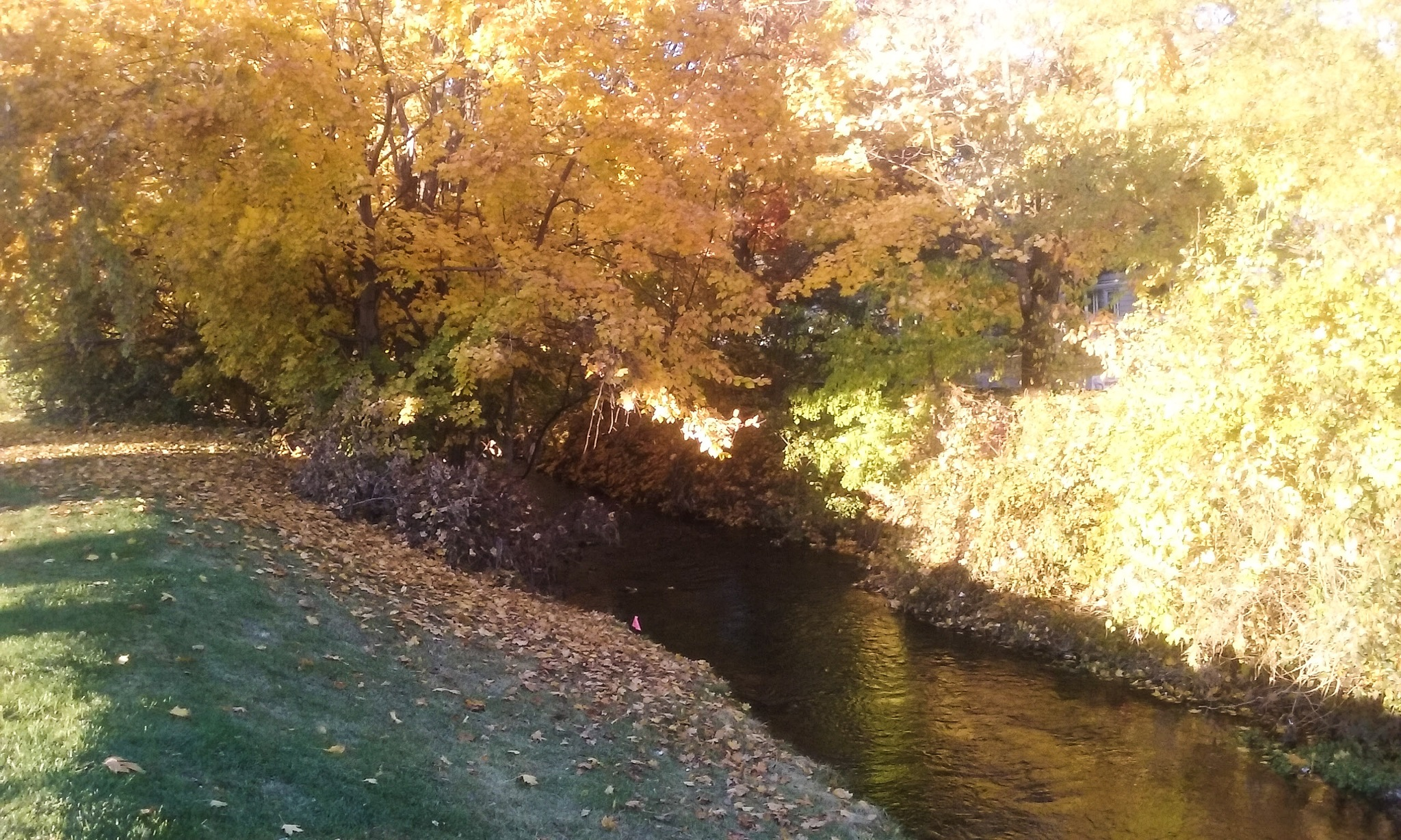 By The Beautiful Stream by Mark Morrison-LeMay