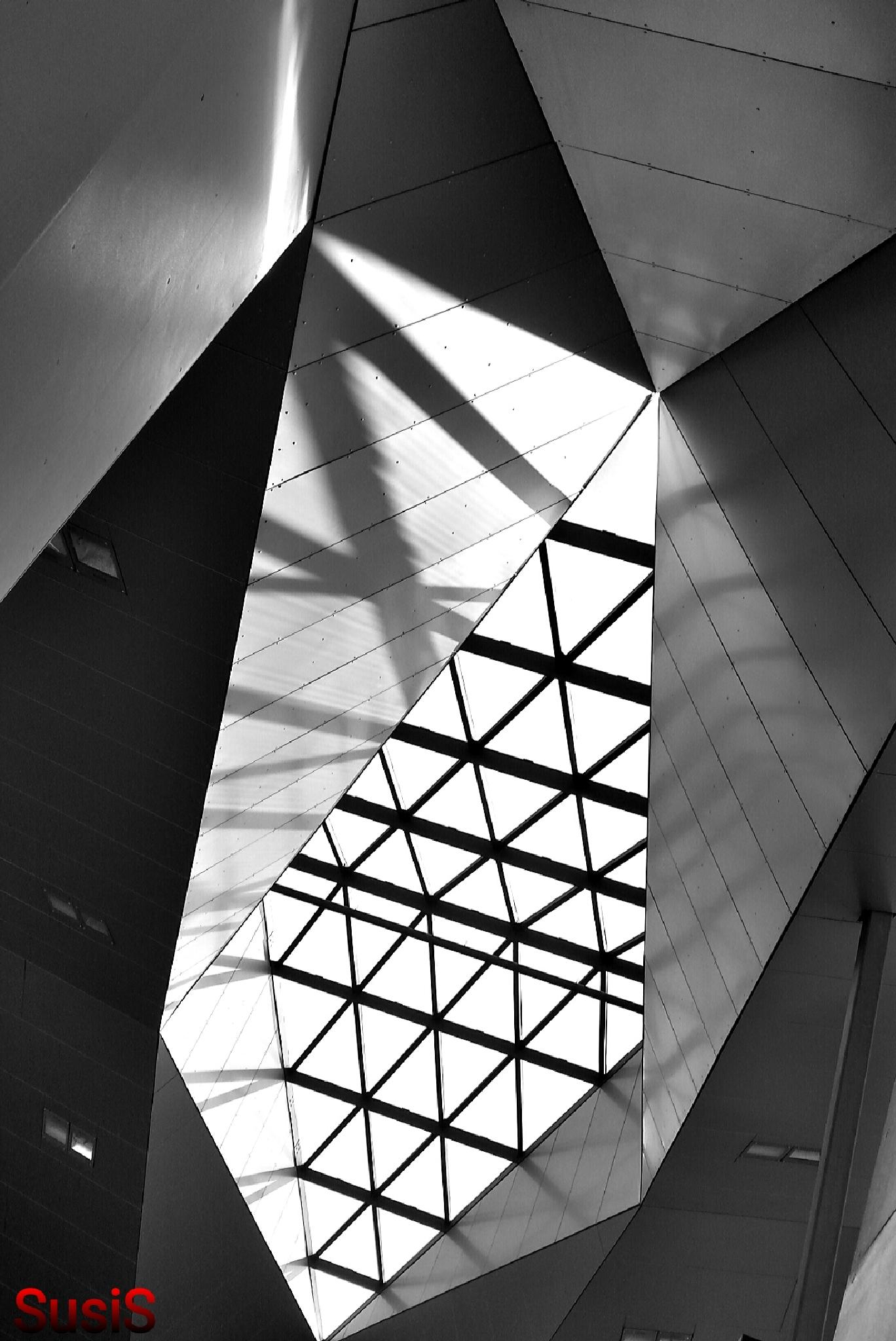 The roof by SusiS