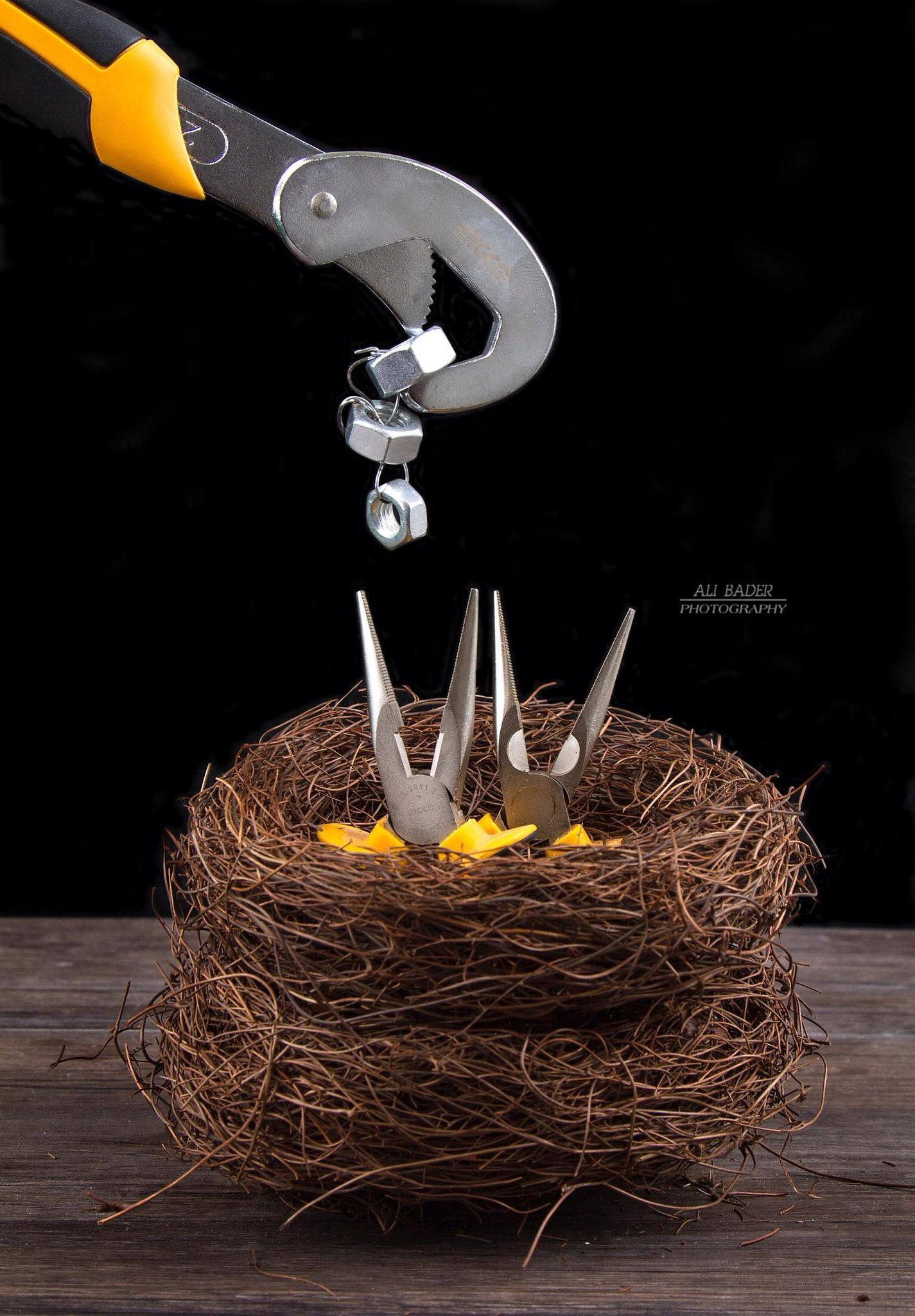 hungry by Ali Bader