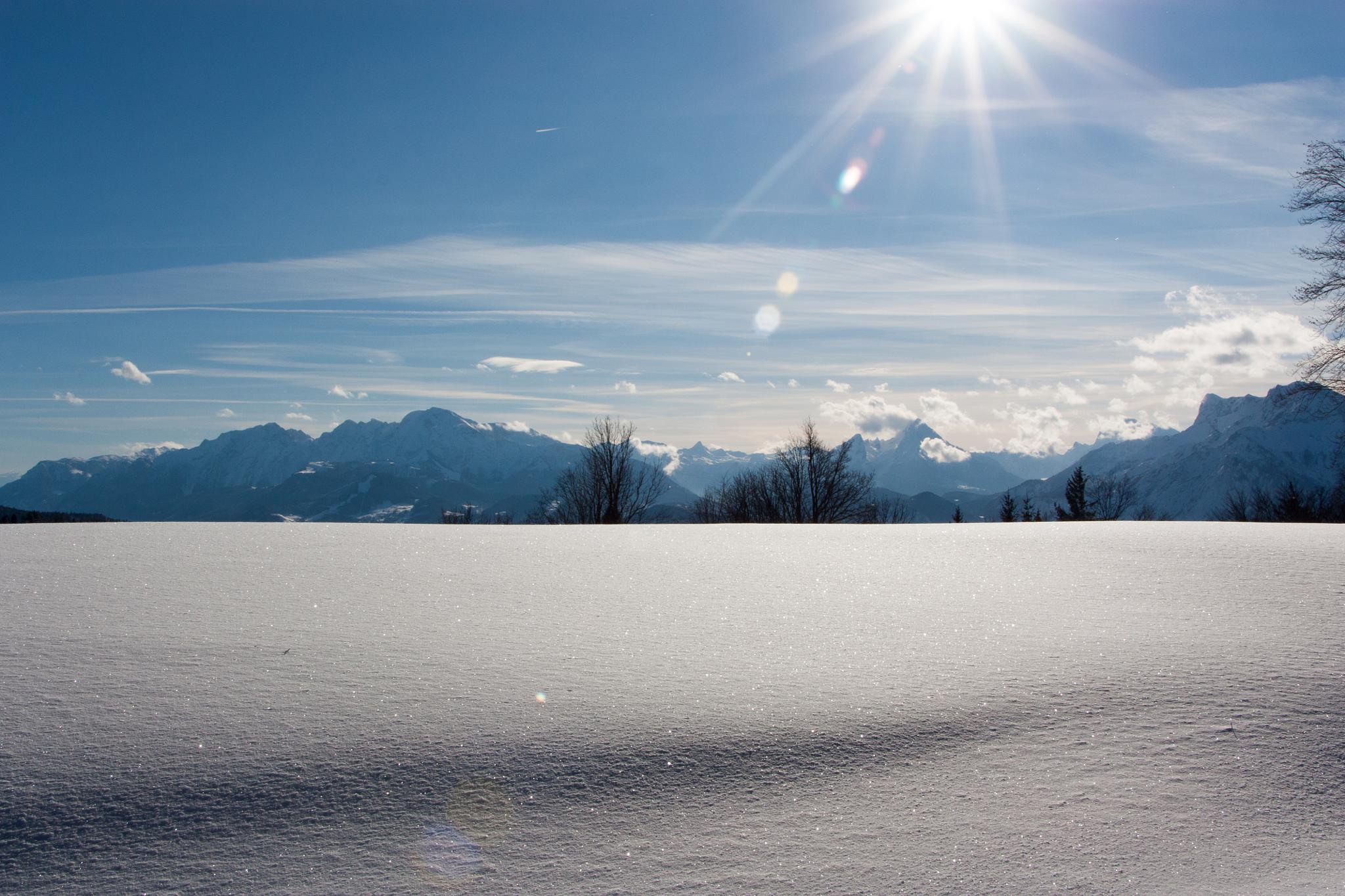 Snow by Levin von Lenthe