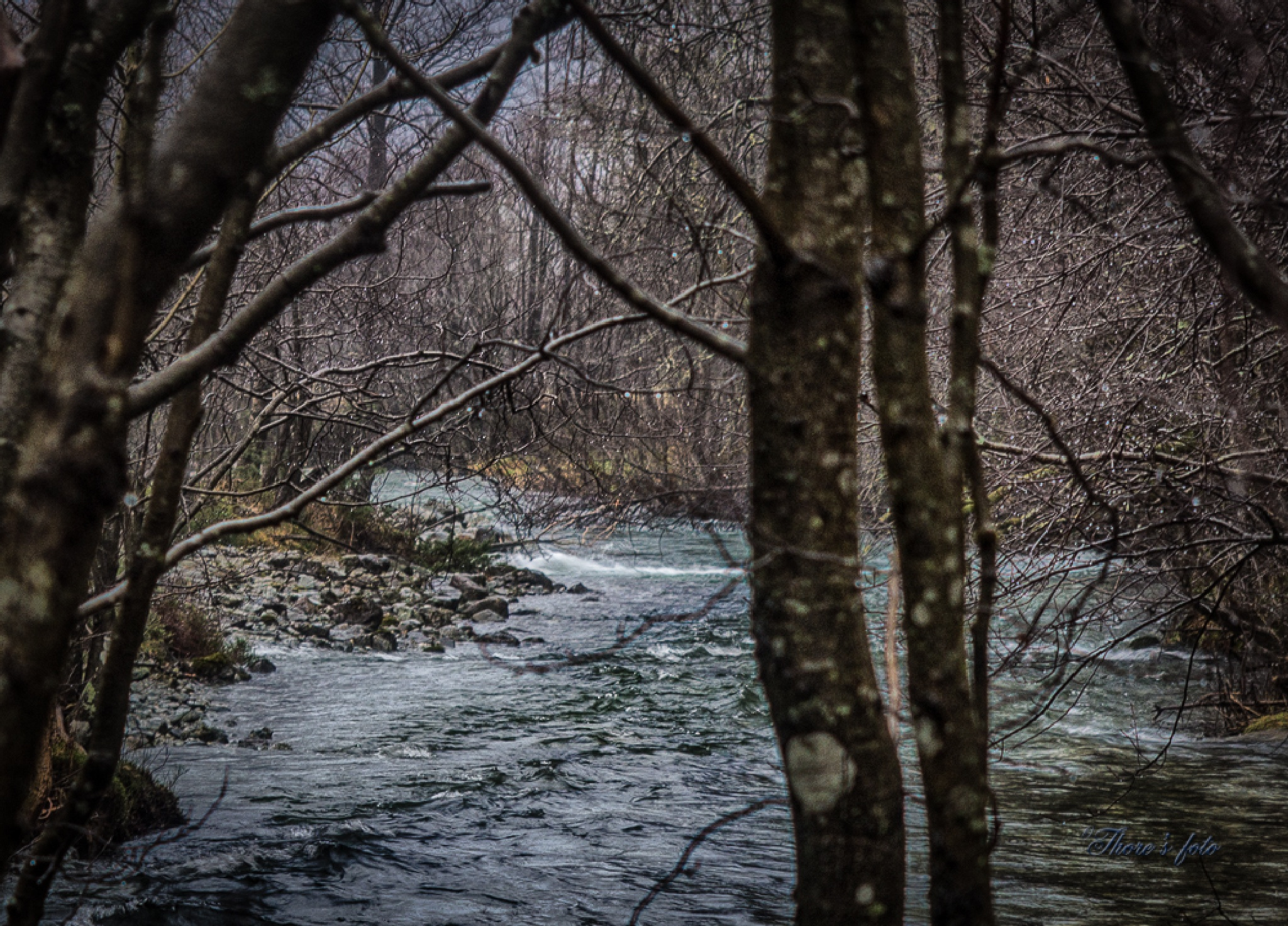little river in bushwood by Thore's photo
