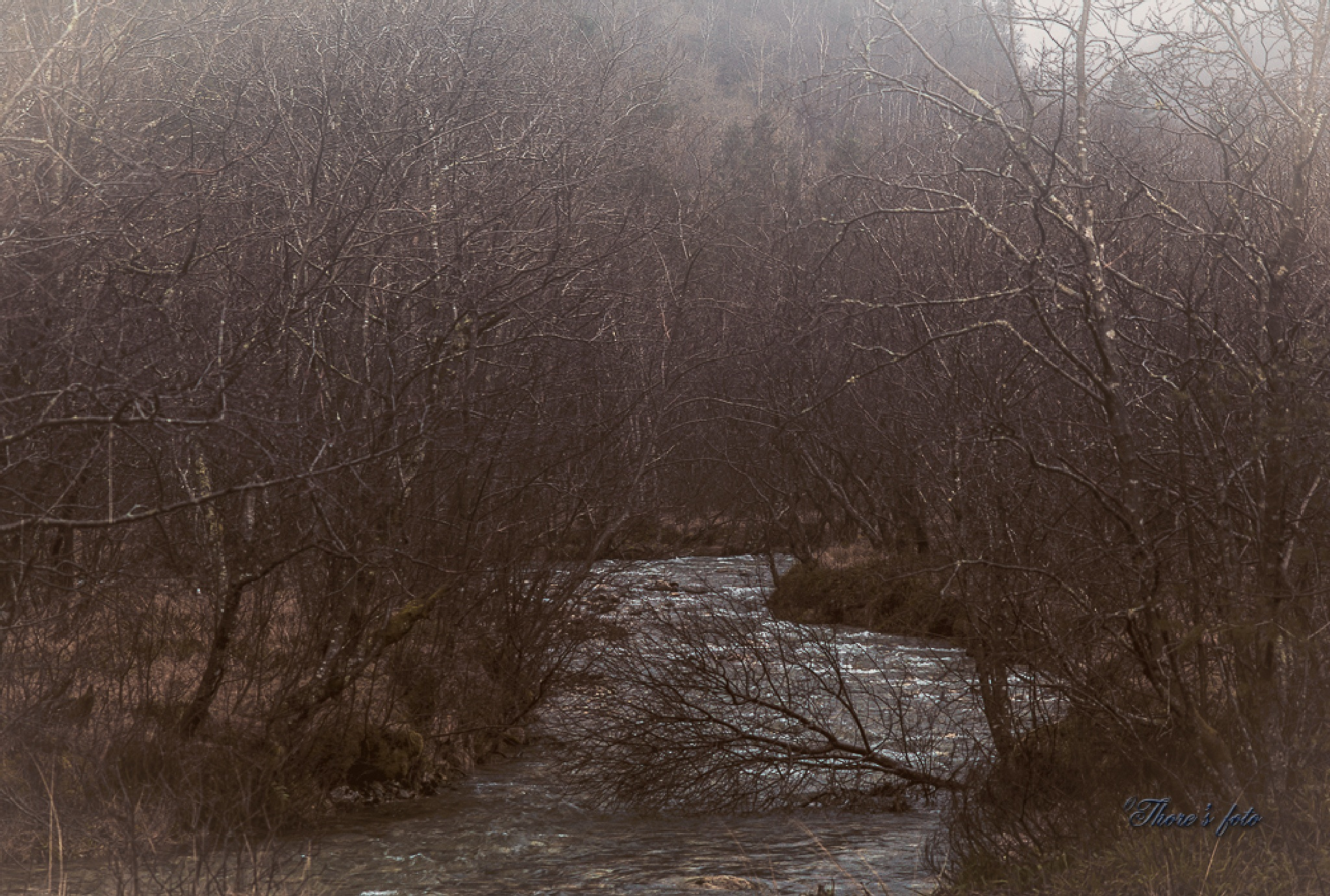 The creek by Thore's photo