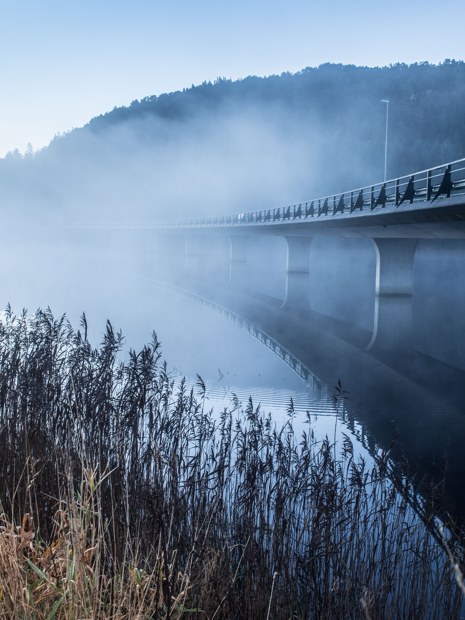 The bridge into the frost mist by Thore's photo