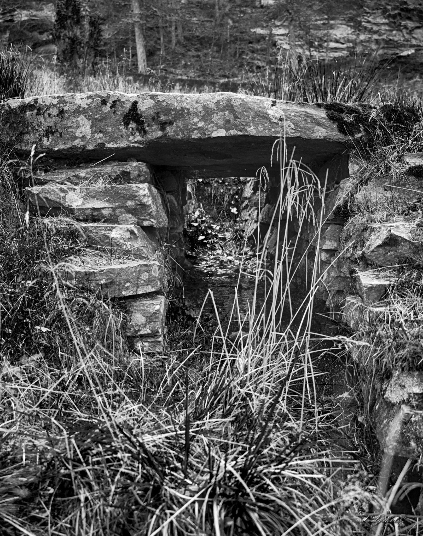 the stonebridge in bw by Thore's photo