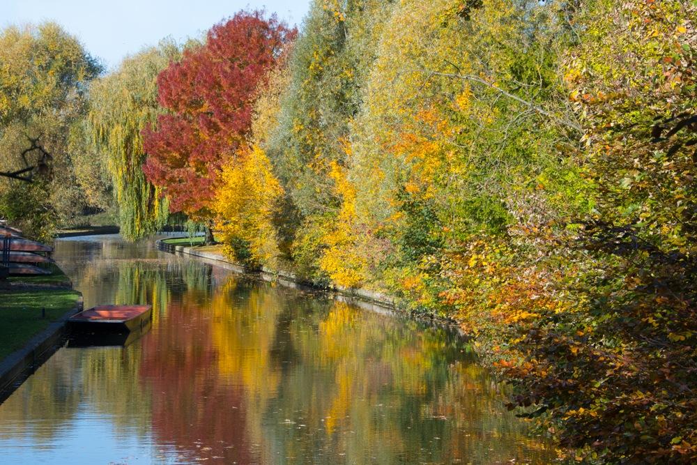 Reflected Autumn Colours - River Cam Cambridge by stevetaylor520