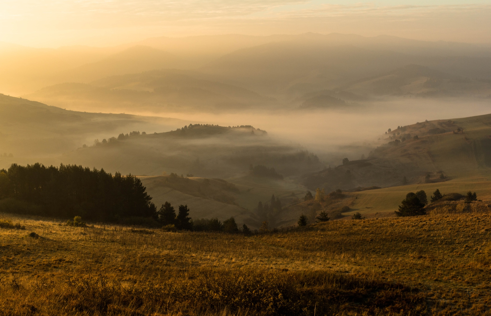 Slovakia in the fog by green