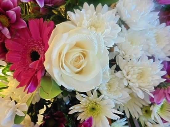 beautiful flowers  by sallyannegriff