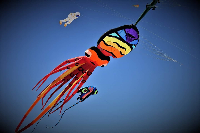 kite festival  by sallyannegriff