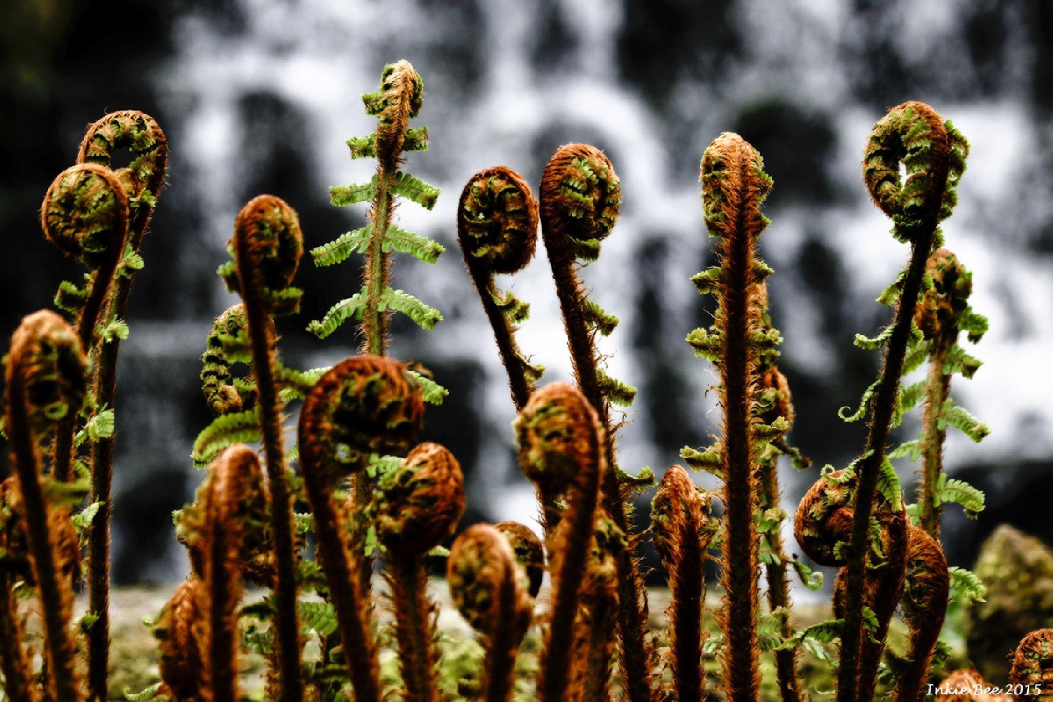 Monde Verde by Inkie Bee