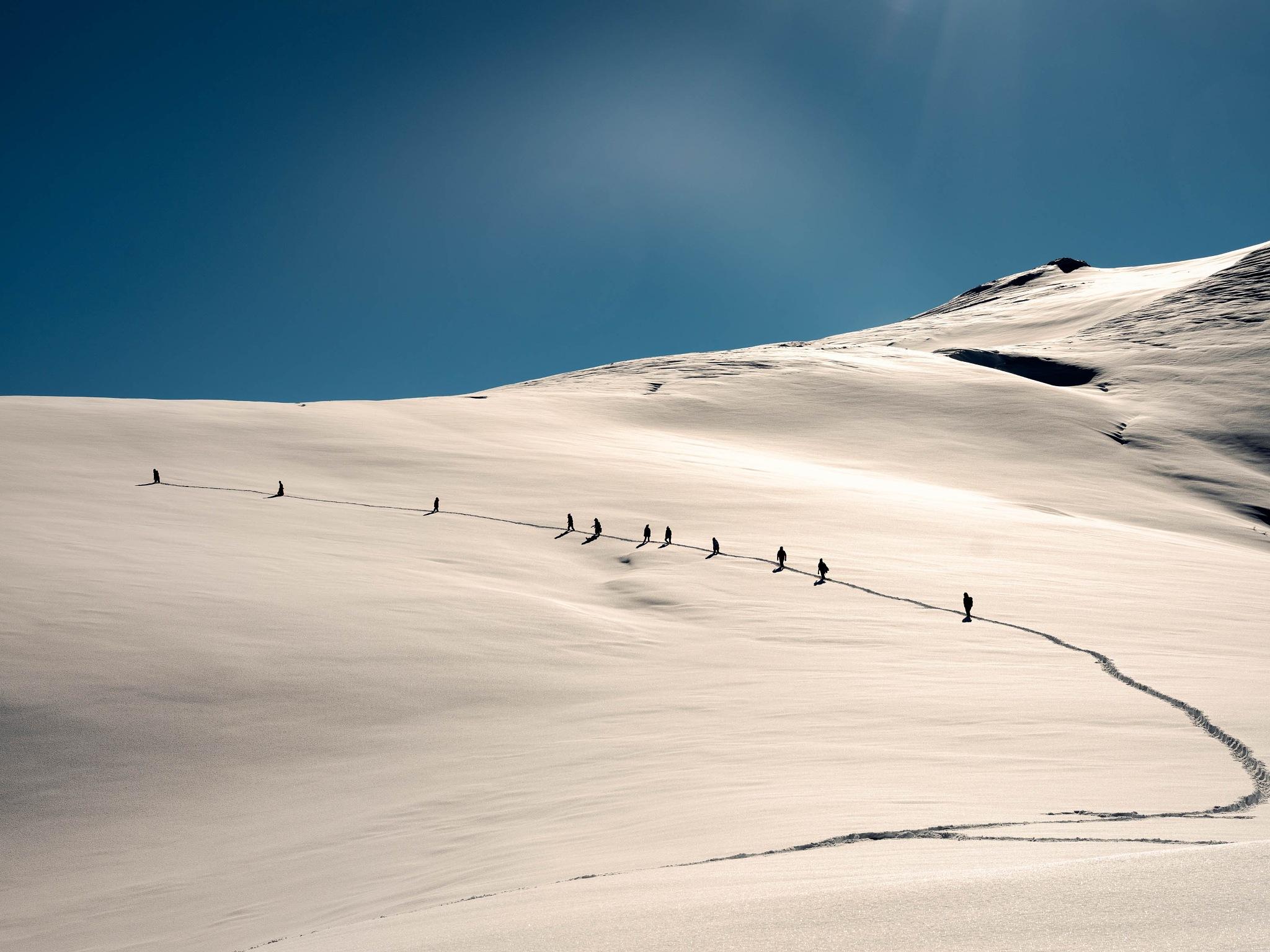 Photo in Landscape #winter #snow