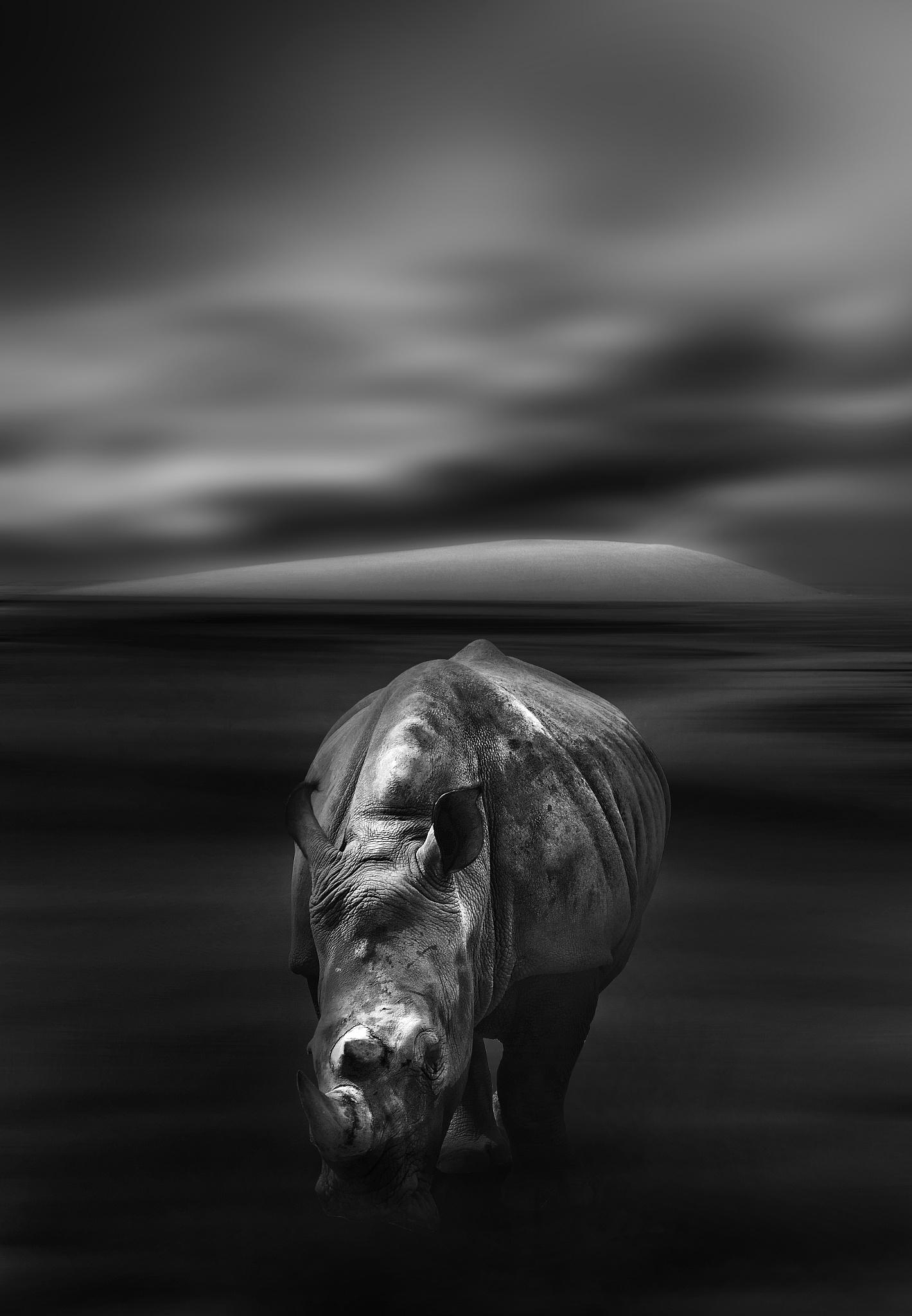 le gardien de la dune by Moussa Idrissi-MOGRAPHE