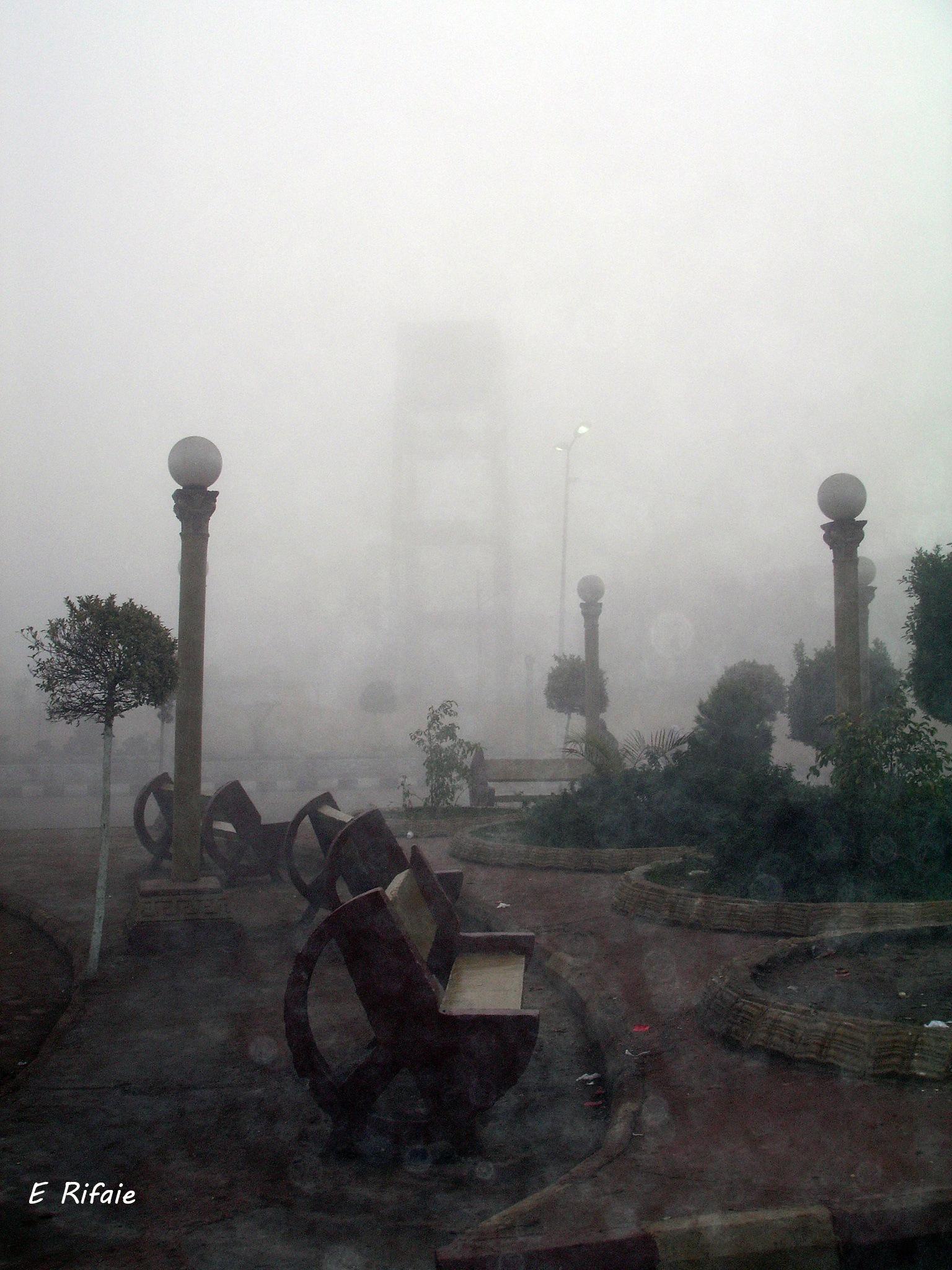 Natural fog by Emad Eldin Moustafa El Refaie